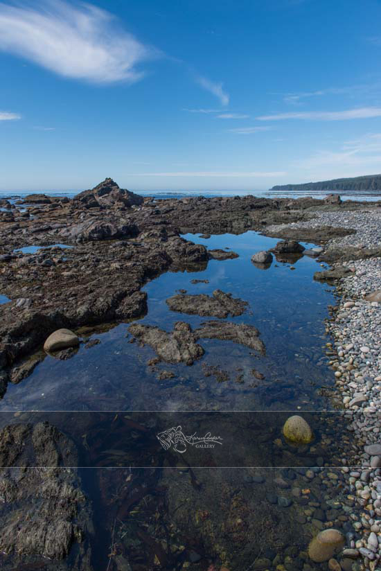 Above and Below - Sombrio Beach
