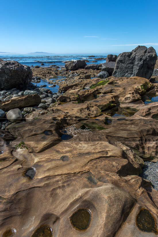 Coastal Abstract, Vancouver Island