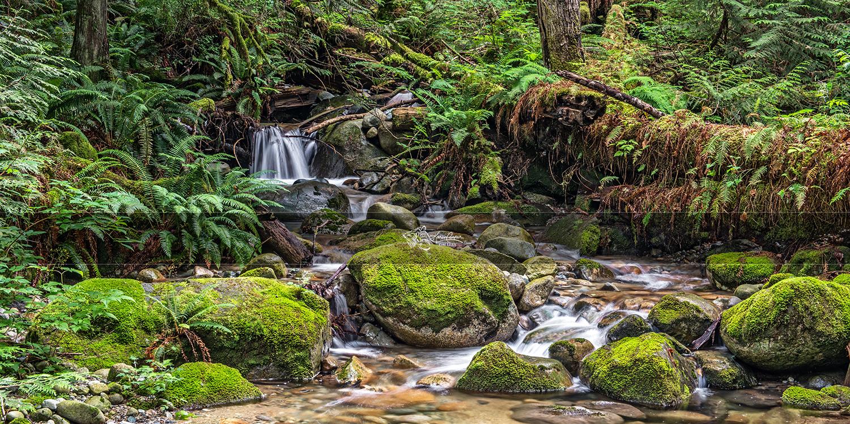 Sacred Stream