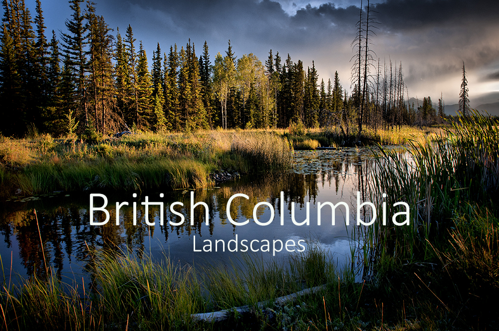 British Columbia Landscapes.jpg