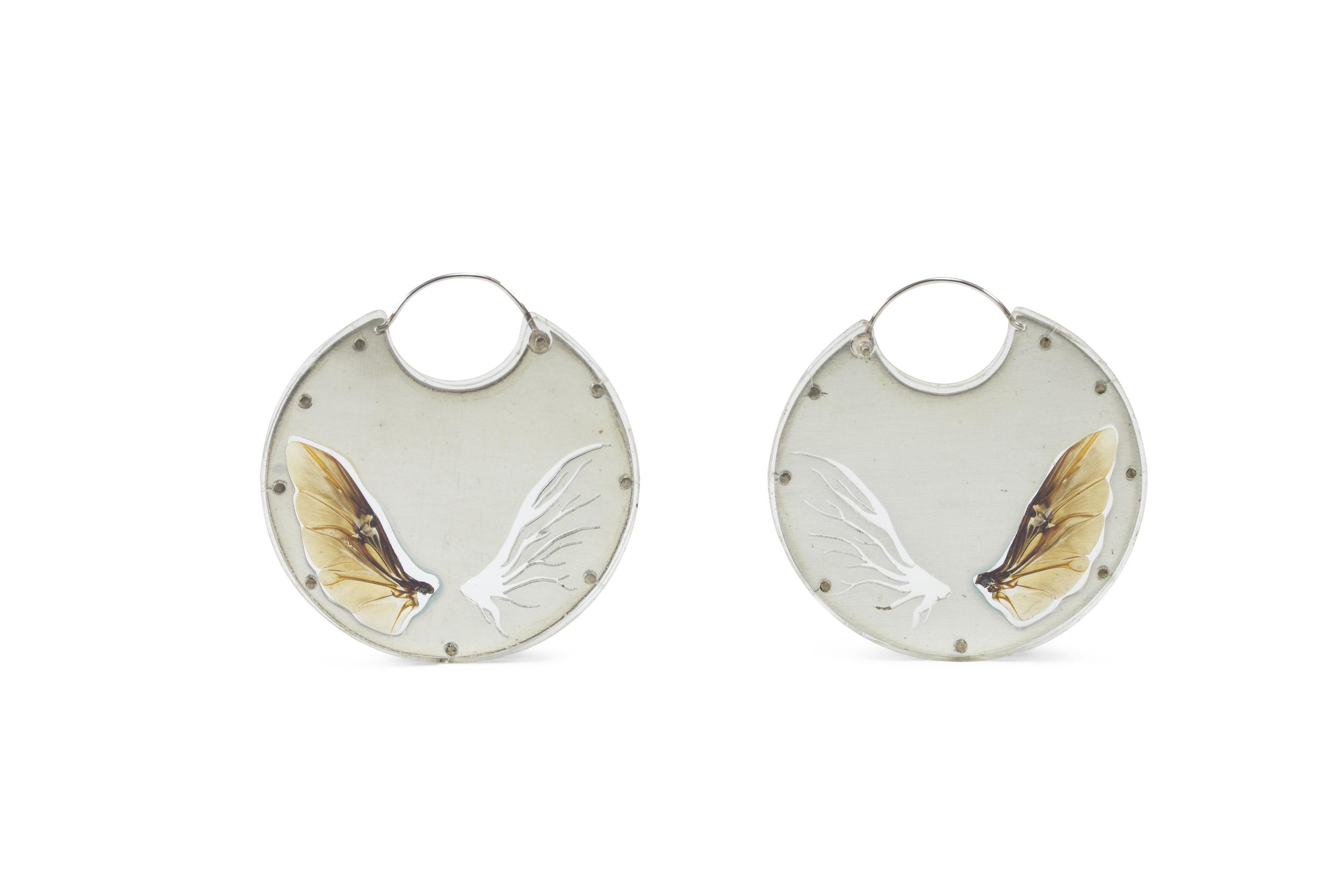 Mirror Beetle Encasements Luana Coonen.jpg