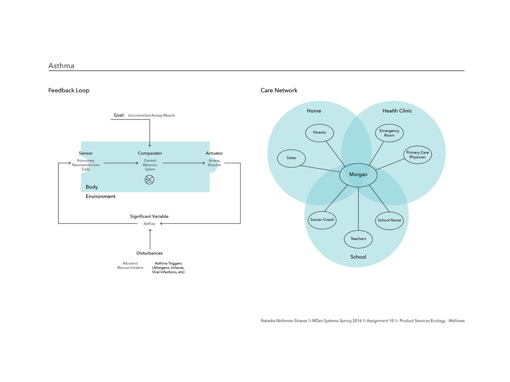 FEEDBACK LOOP & CARE NETWORK: The feedback loop diagram explains how asthma is treated within the body, while the care network maps the systems and touchpoint the child interacts with in managing care.