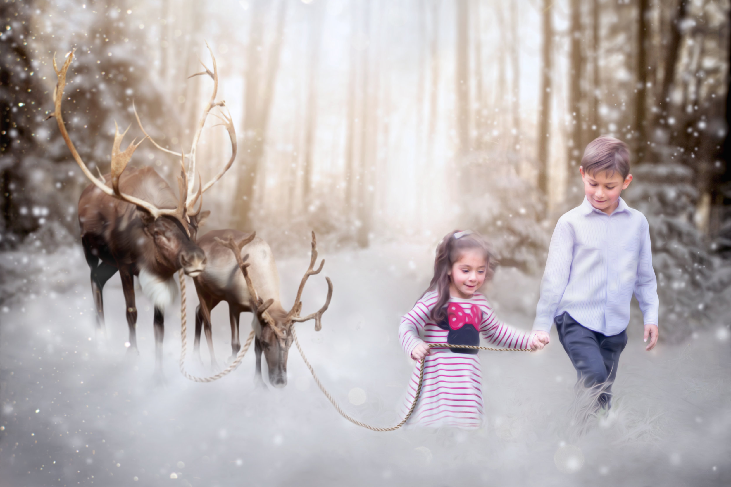 Bellino Family Collection- REINDEERS.jpg