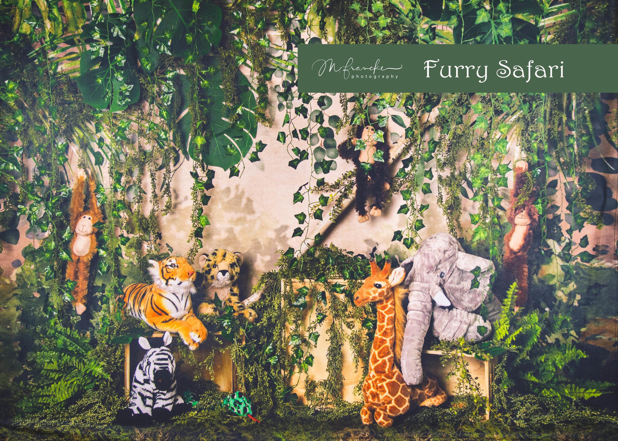 FurrySafari-MFranckePhotography.jpg