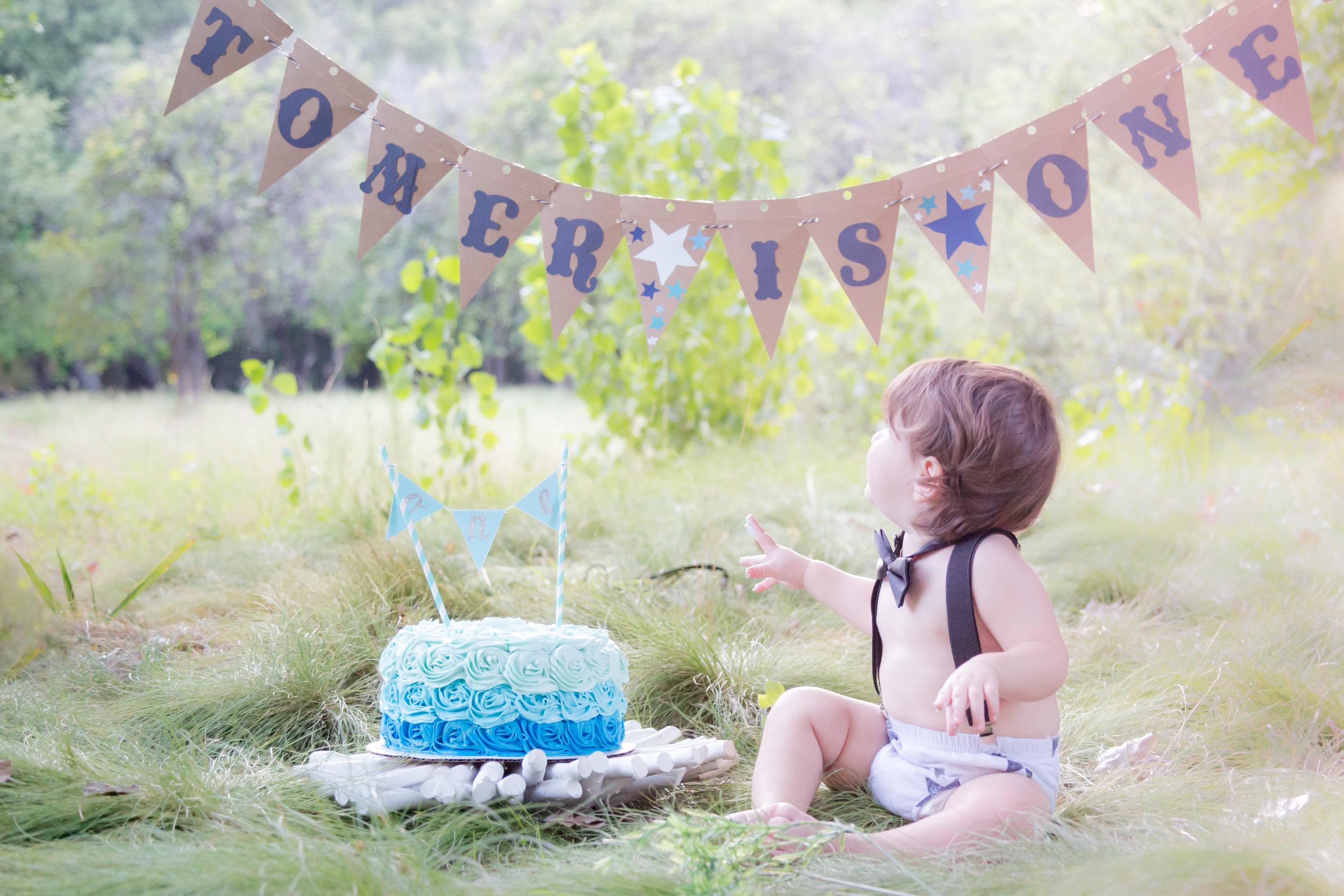 Tomer Smash Cake Collection-46.jpg