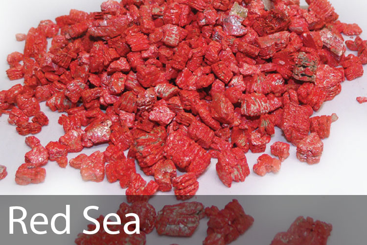 Red-Sea.jpg