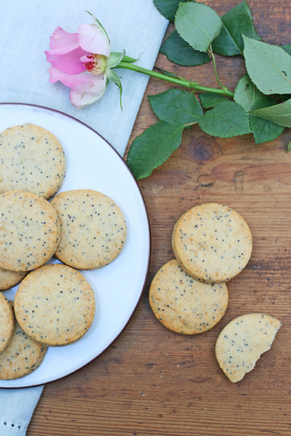 parmesan and poppy seed shortbread