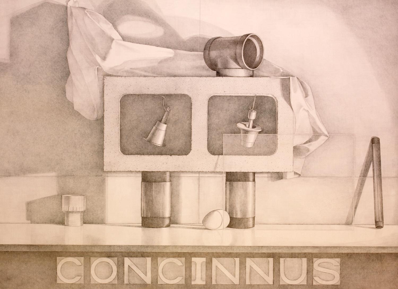 Concinnus