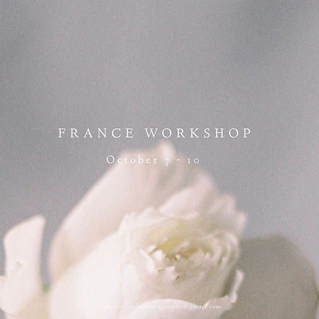 Seats to our France Workshop October 7-10 are more then halfway filled! Don't miss out on this amazing opportunity to add four gorgeous shoots to your portfolio ✨  Lodging & meals are all included in the ticket price — here's the Venue: @chateaubouthonvilliers. Plus Sara Russell from @weddingsparrow will be joining us for a full day to share her knowledge & insight on marketing, branding and more  Link in Bio to sign up! Get the early bird price — payment plans are available (pay as little as $500 to start!) @vivianlyttle & I can't wait to see you there 👋🏼