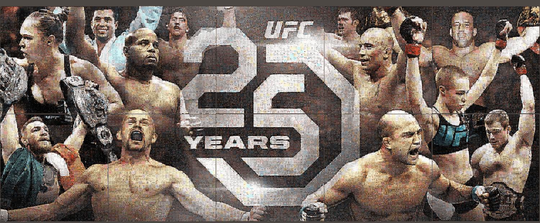 UFC  10 Mosaic Campaign