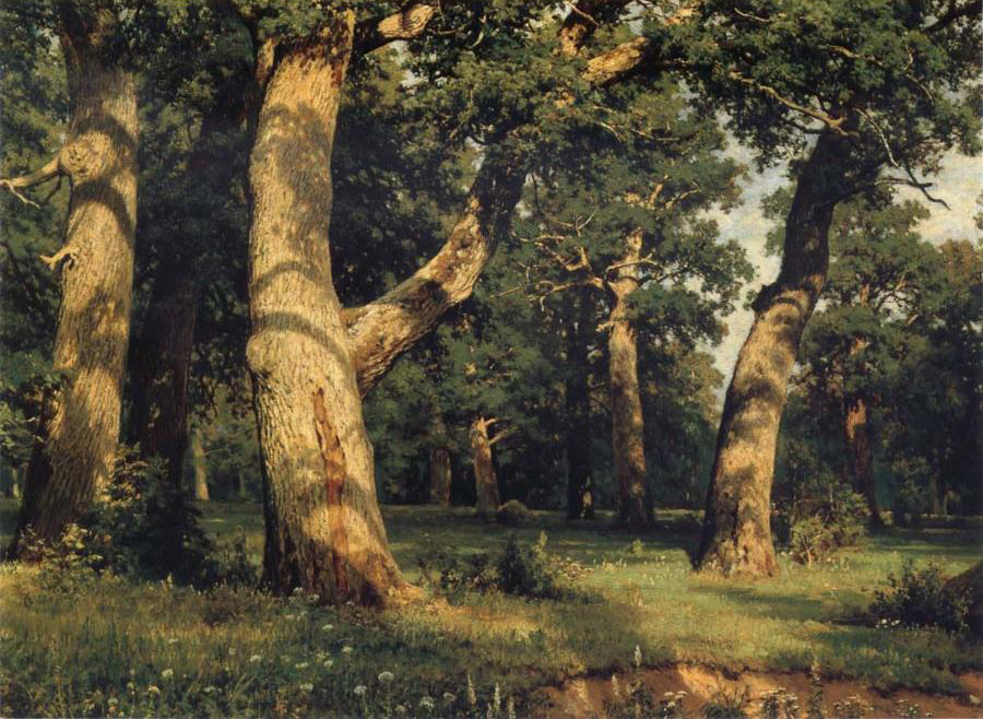 """Oak of the Forest"""