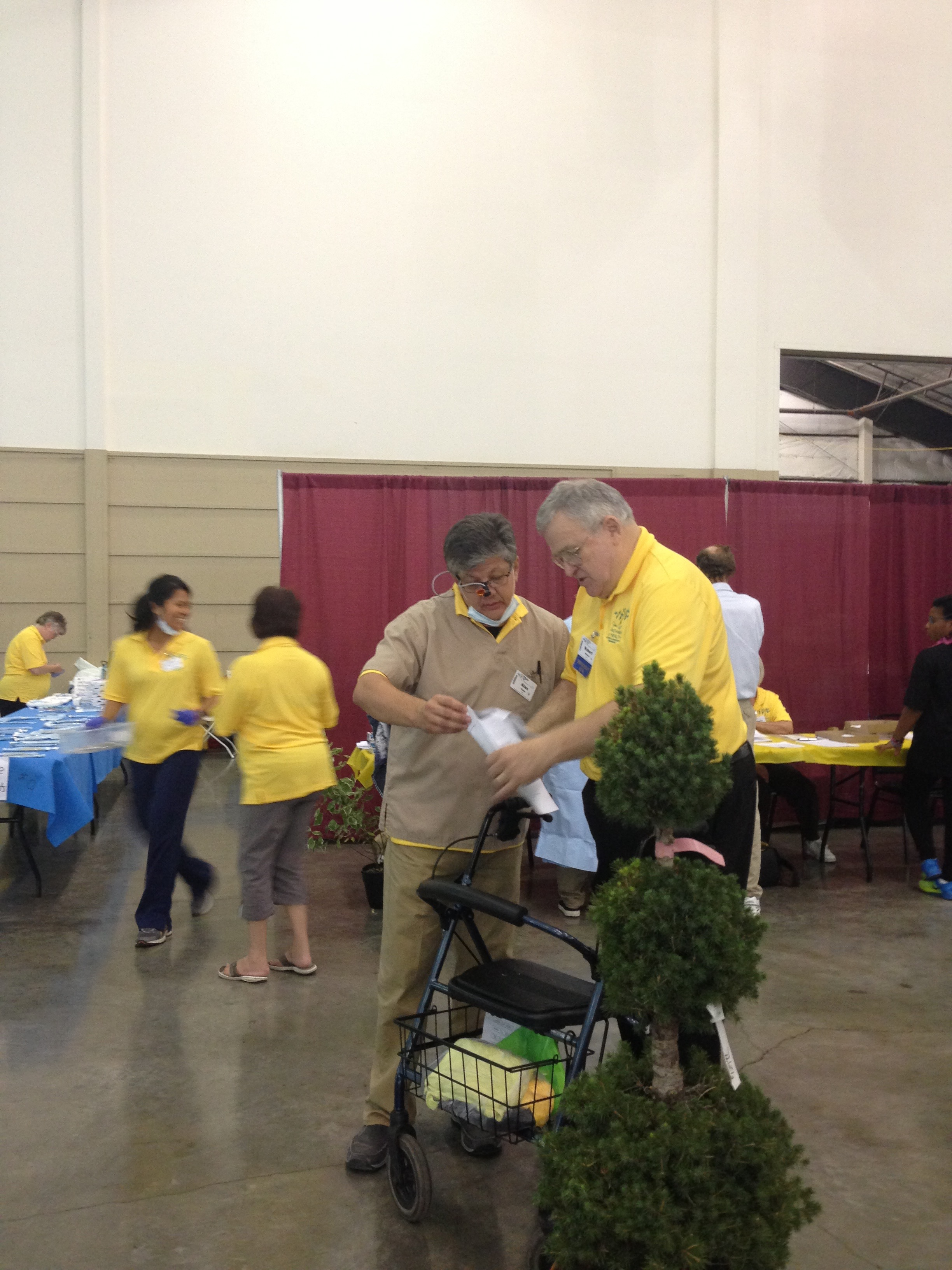 Volunteers at Pathways to Health 2015.