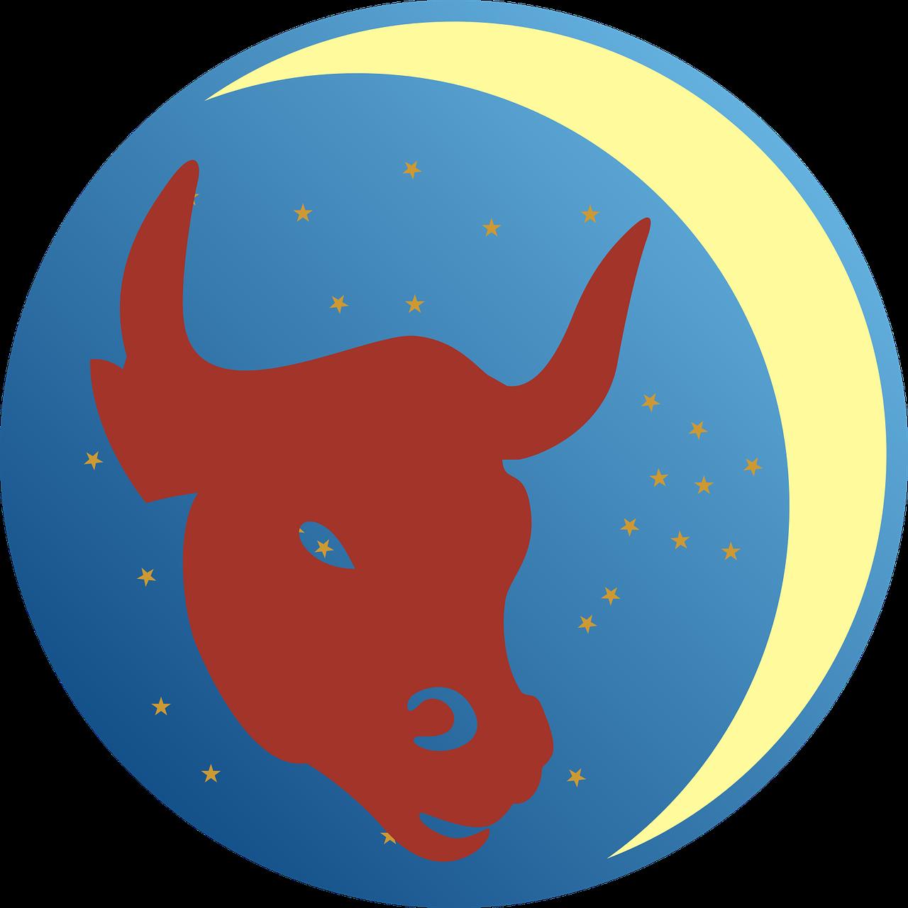 bull-2478801_1280.png