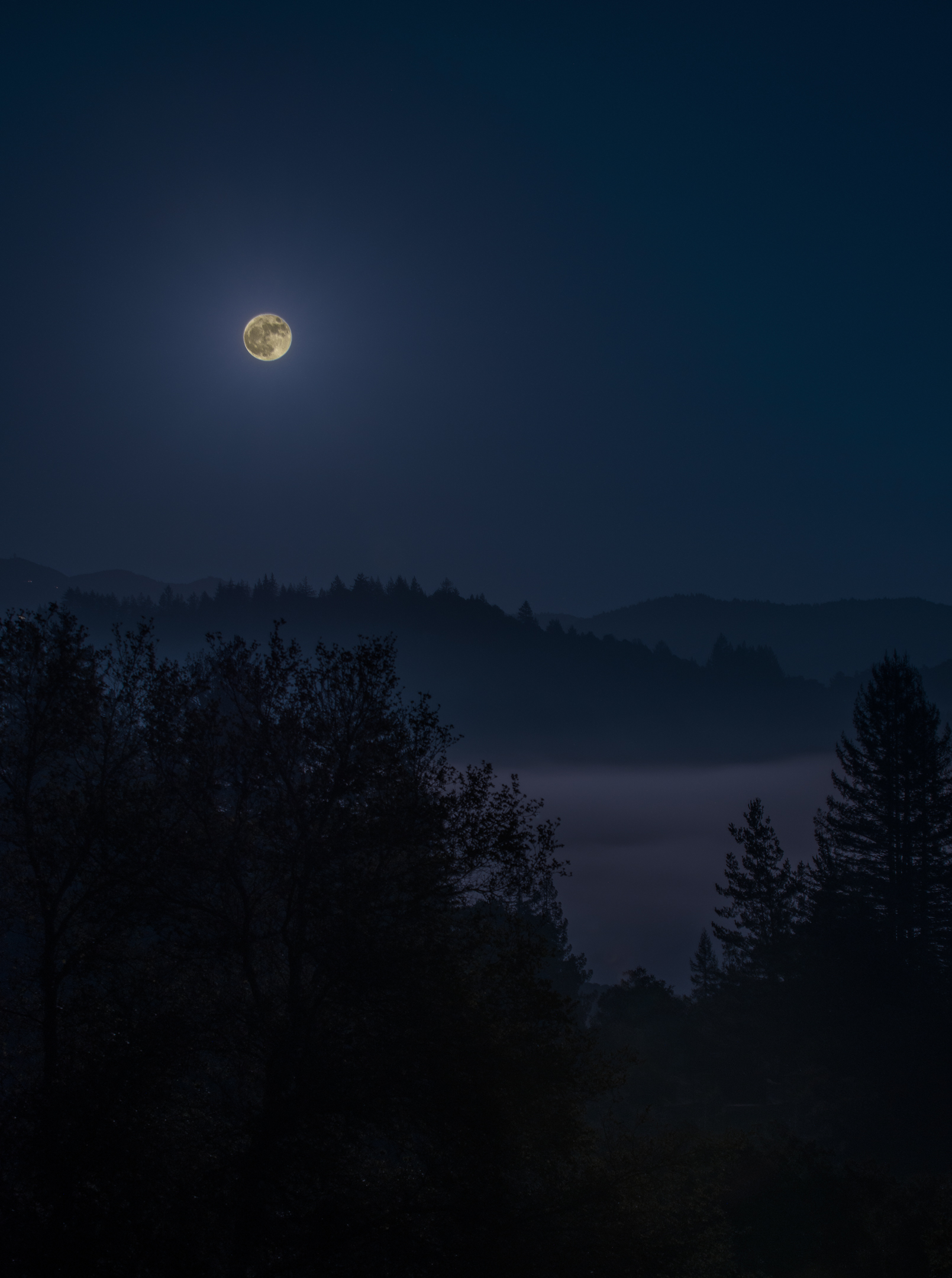 5 Must Read Books For The Moon