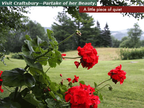 Copy of flowers in Craftsbury