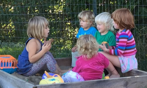 Craftsbury Saplings    childcare(1-1/2-5 year olds)  PO Box 87 Craftsbury, VT 05826 CraftsburyChildcare@gmail.com