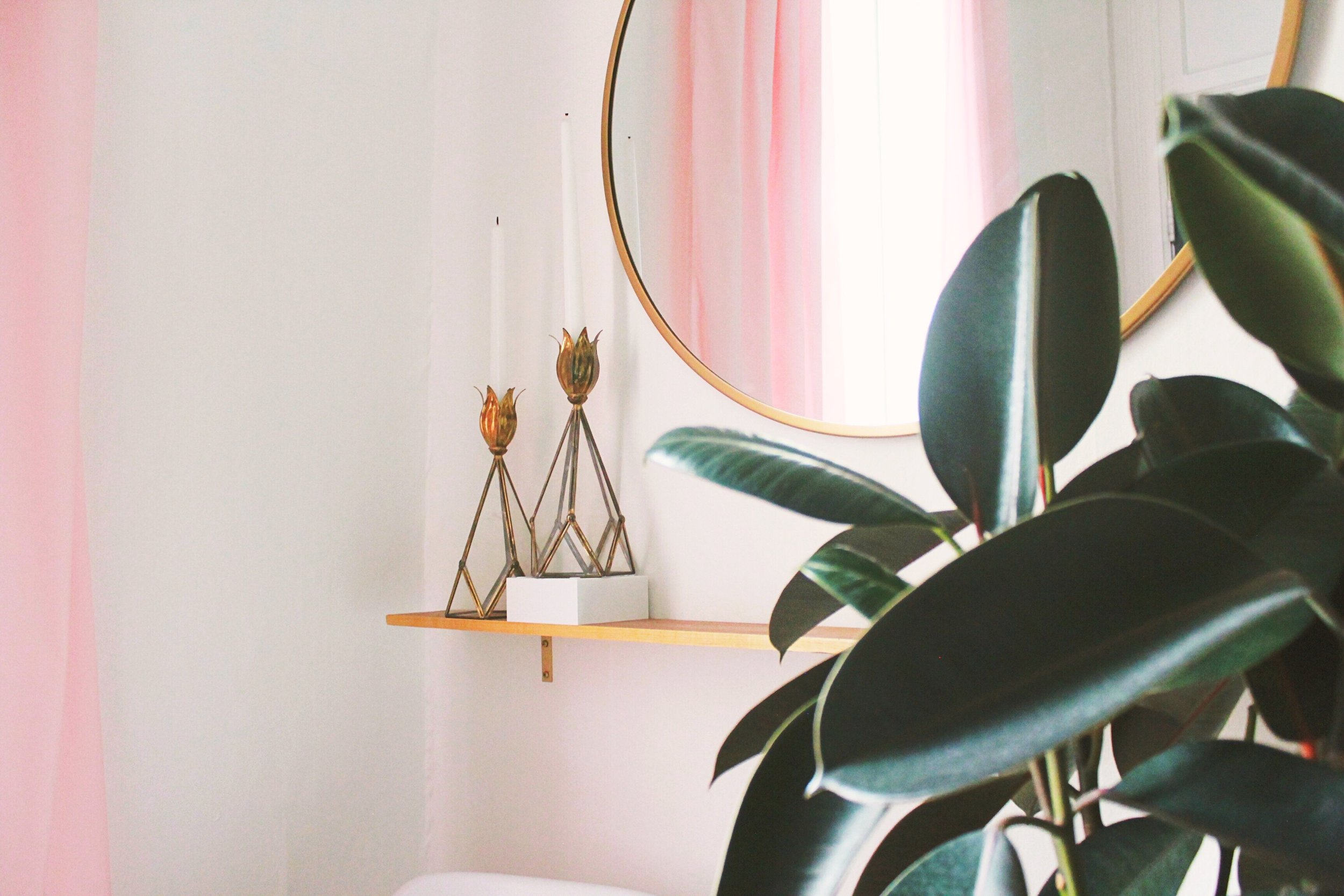 Copy of Pink and Green Entryway, Brass Round Mirror, Rubber Plant