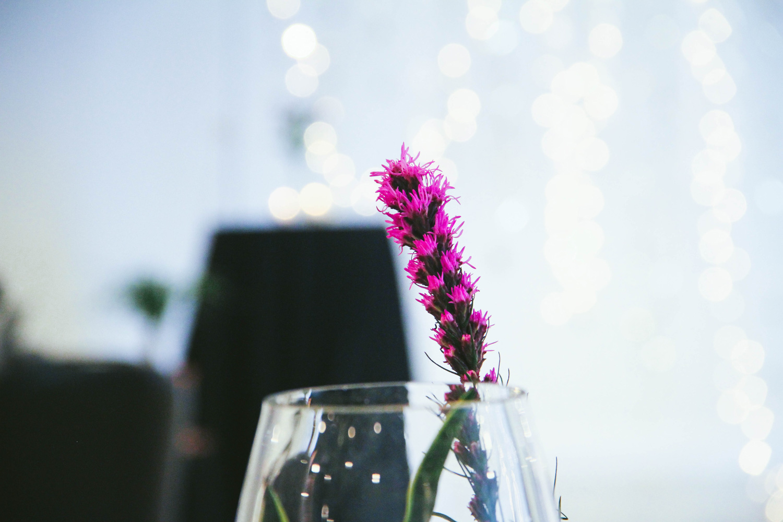 Pedersen Wedding-4.jpg