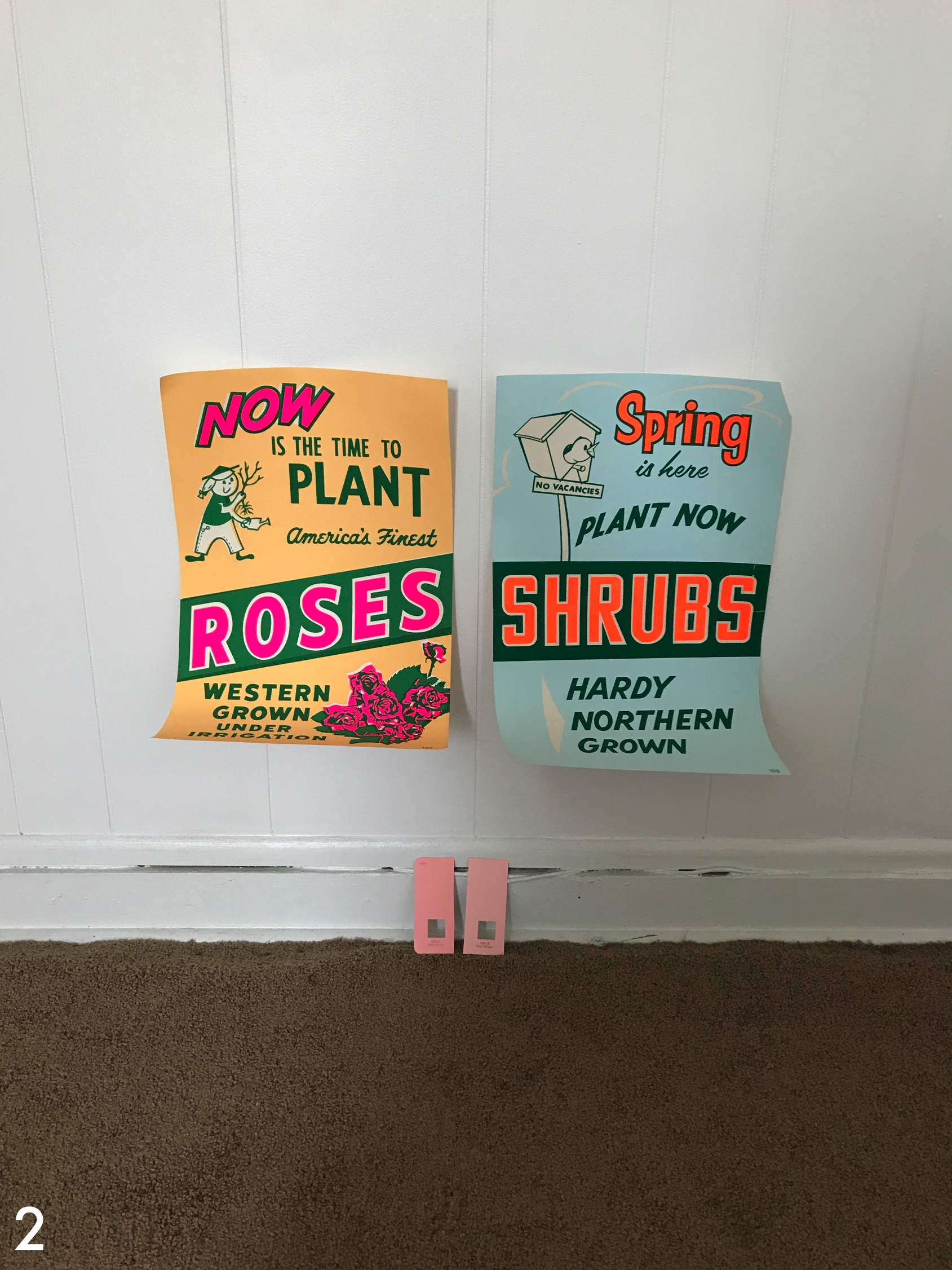 Paint options