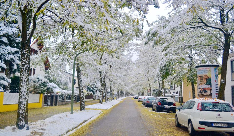 Snow in fall in Munich, Germany. Image©gunjanvirk