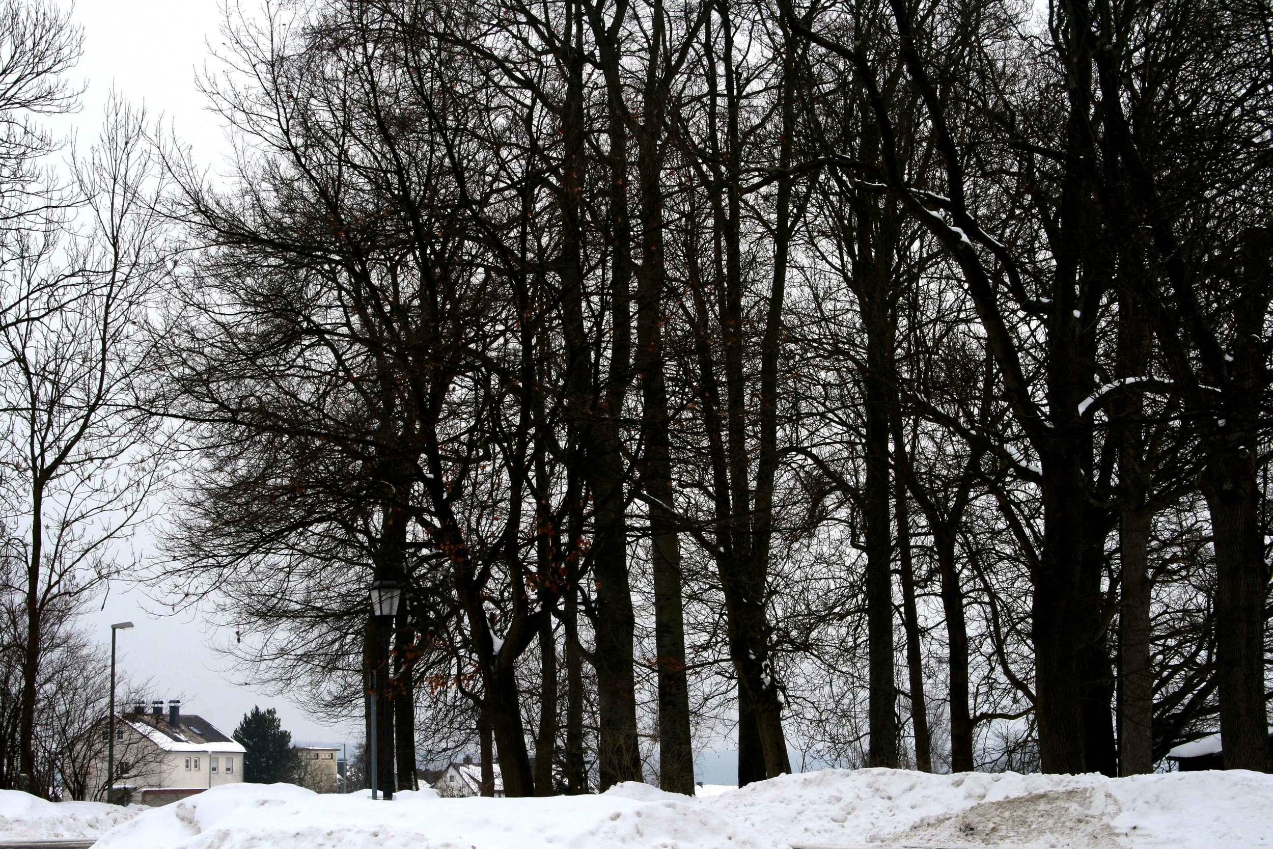 Image©Author, Konnersreuth, Bavaria, Germany in winter. Mystic, fairyland!