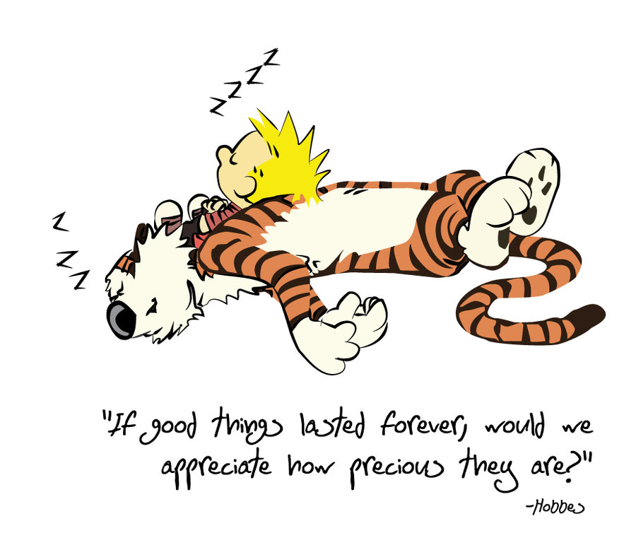 Calvin sleeping with his tiger Hobbes. Image from redpaper.in.