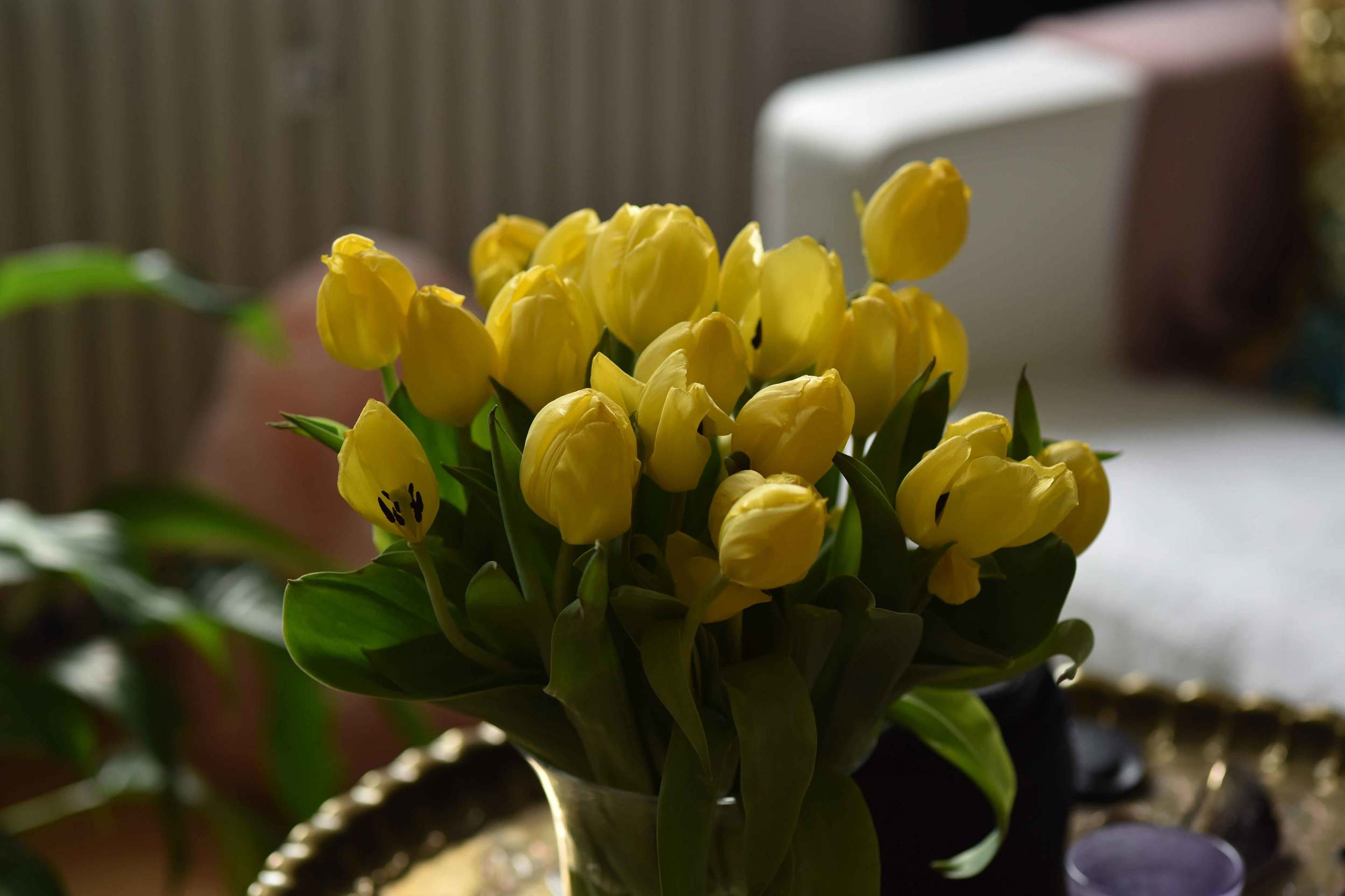 Waking up to yellow tulips! Image©sourcingstyle.com, Photo: Nicola Nolting.