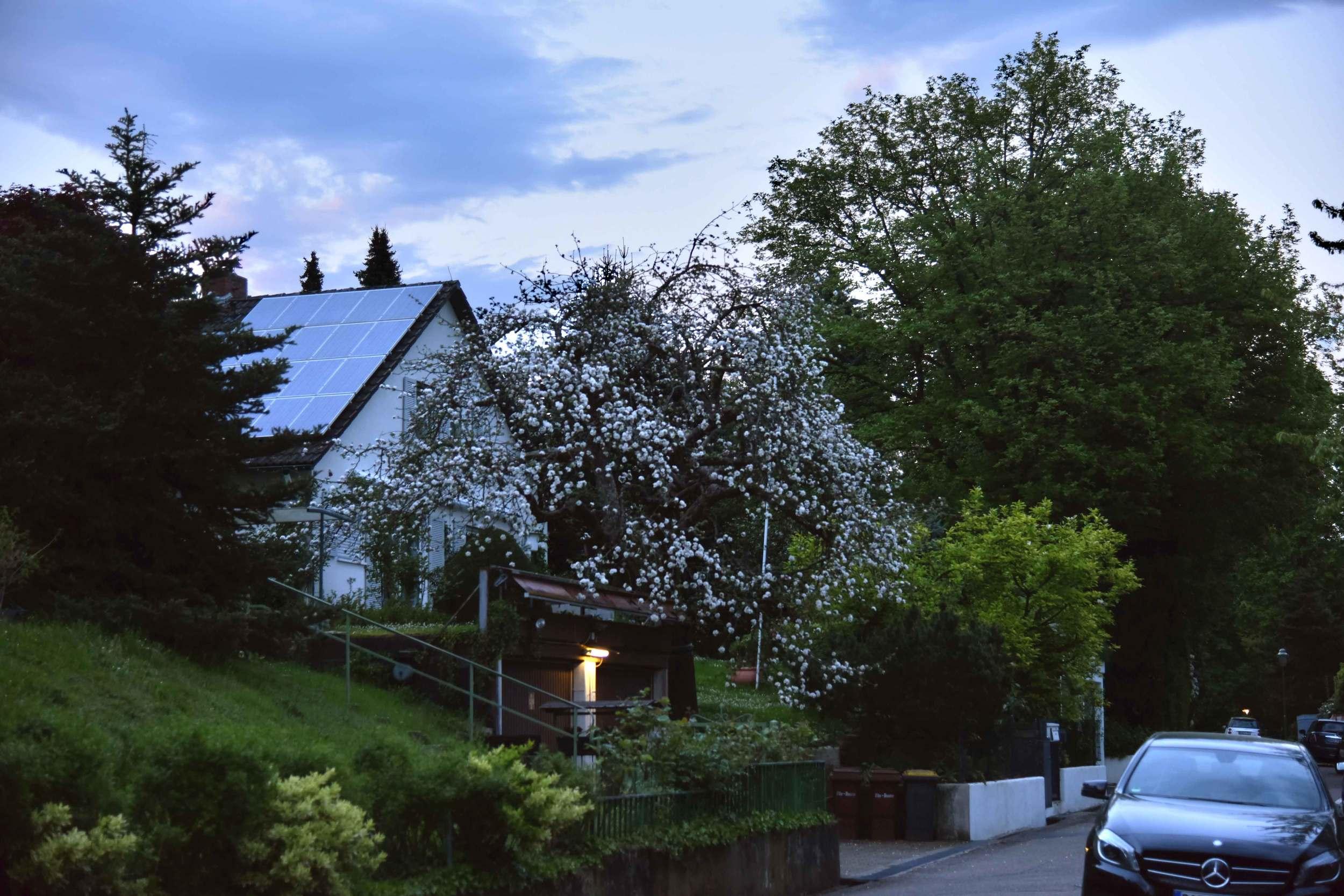 A home in Baden Baden, Germany. Image©sourcingstyle.com