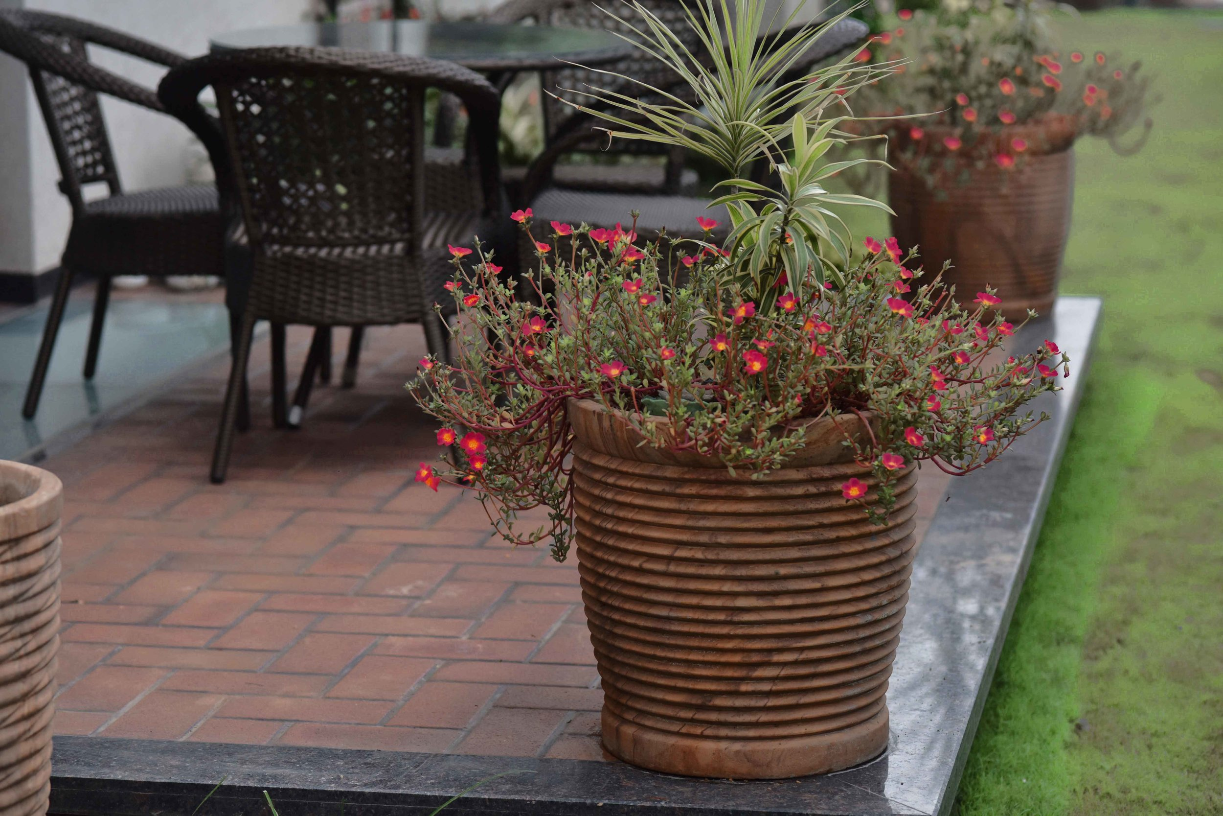 Landscape design by Geeta Singh, potted plants, outside seating. Image©sourcingstyle.com