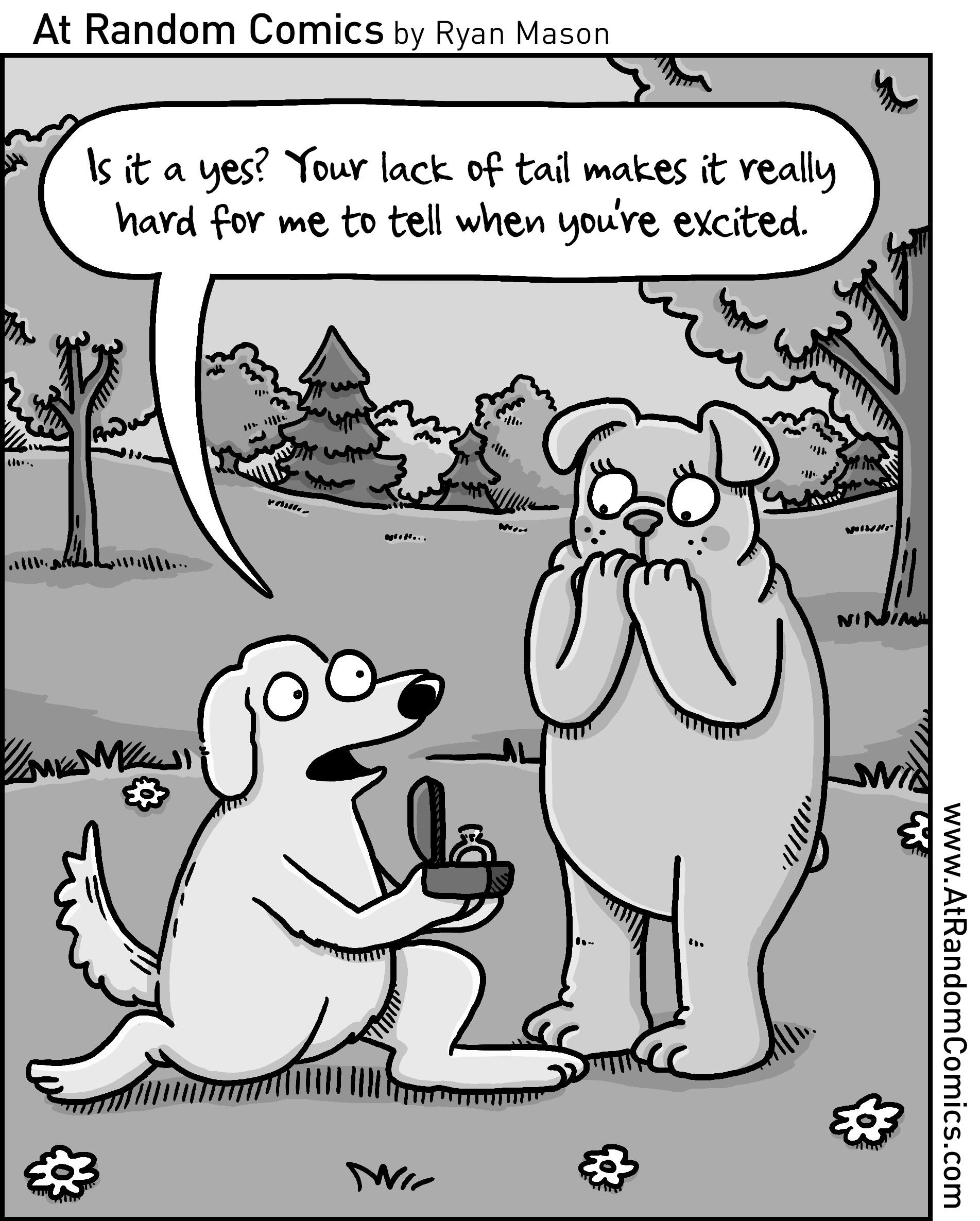 2019_03_Dog Proposal.jpg