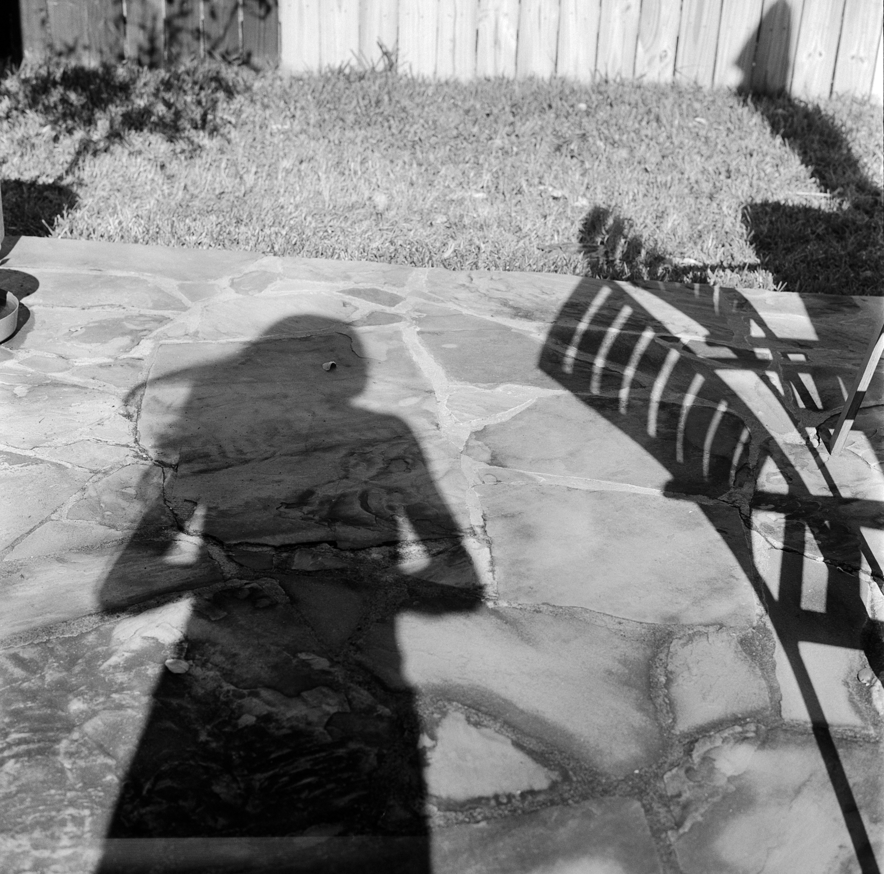 self shadow sm (1 of 1).jpg
