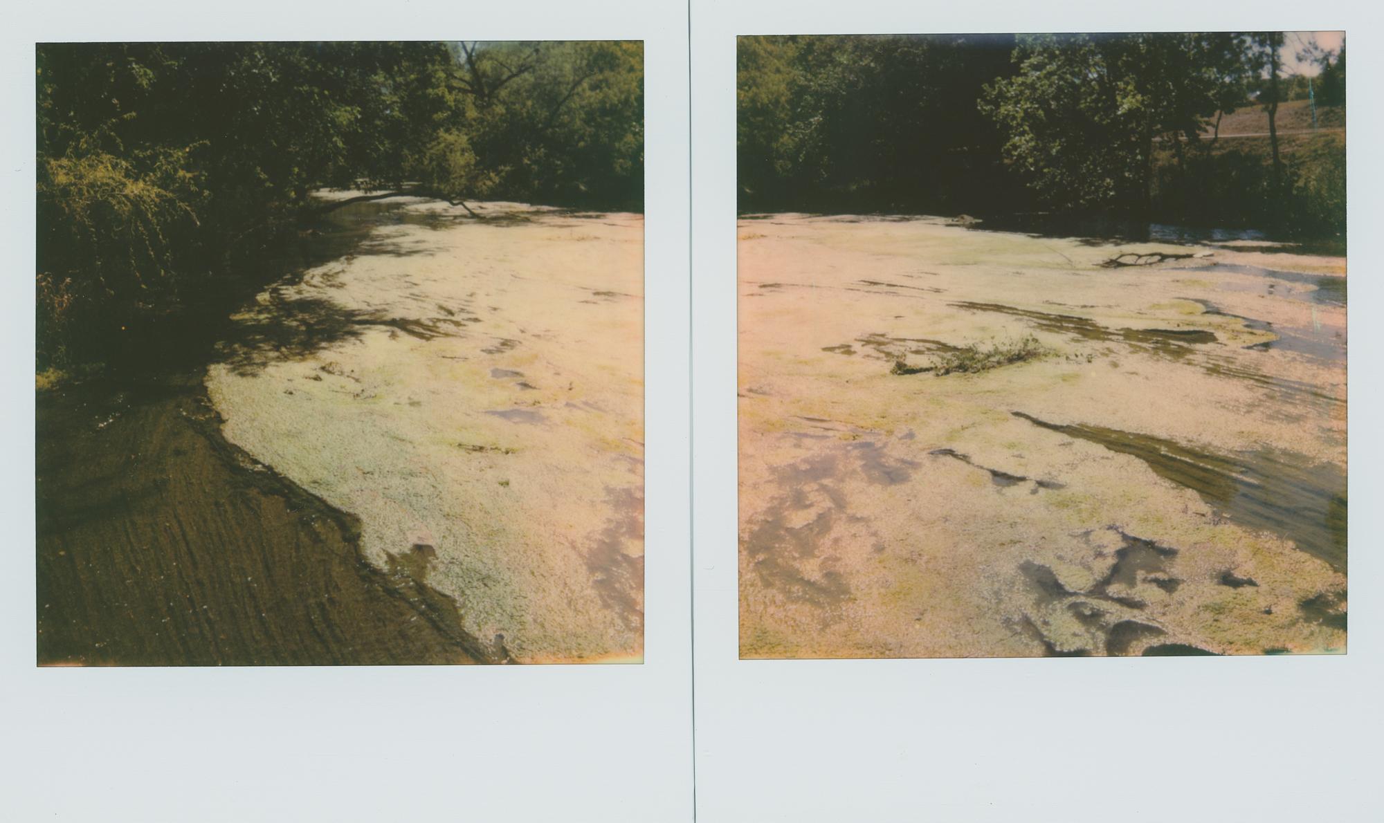 polaroid week RR (2 of 2).jpg