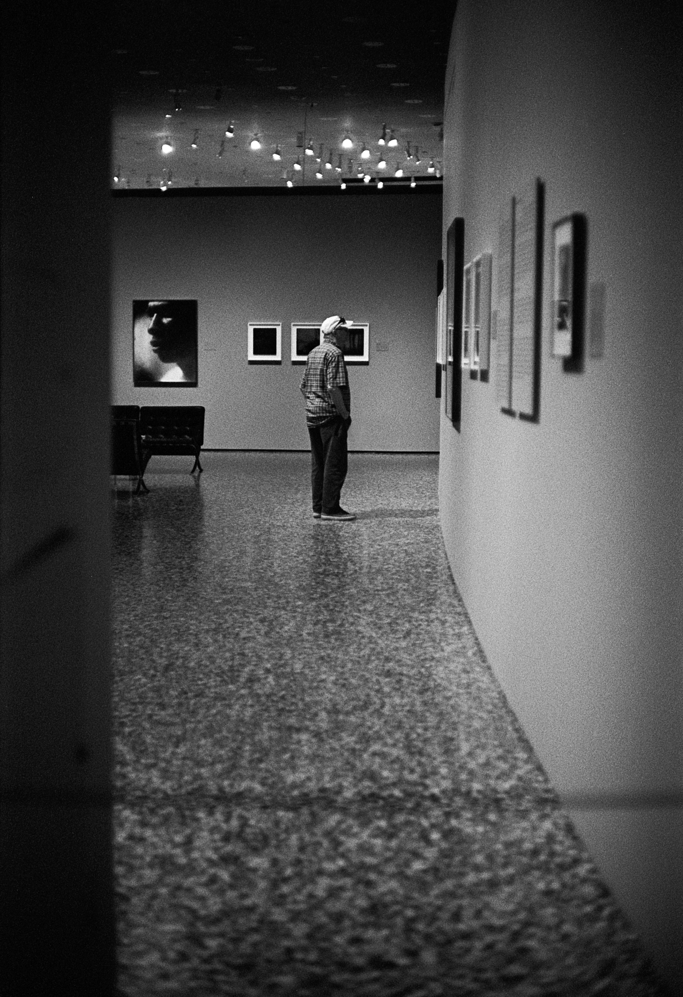 Houston MFAH (1 of 8).jpg