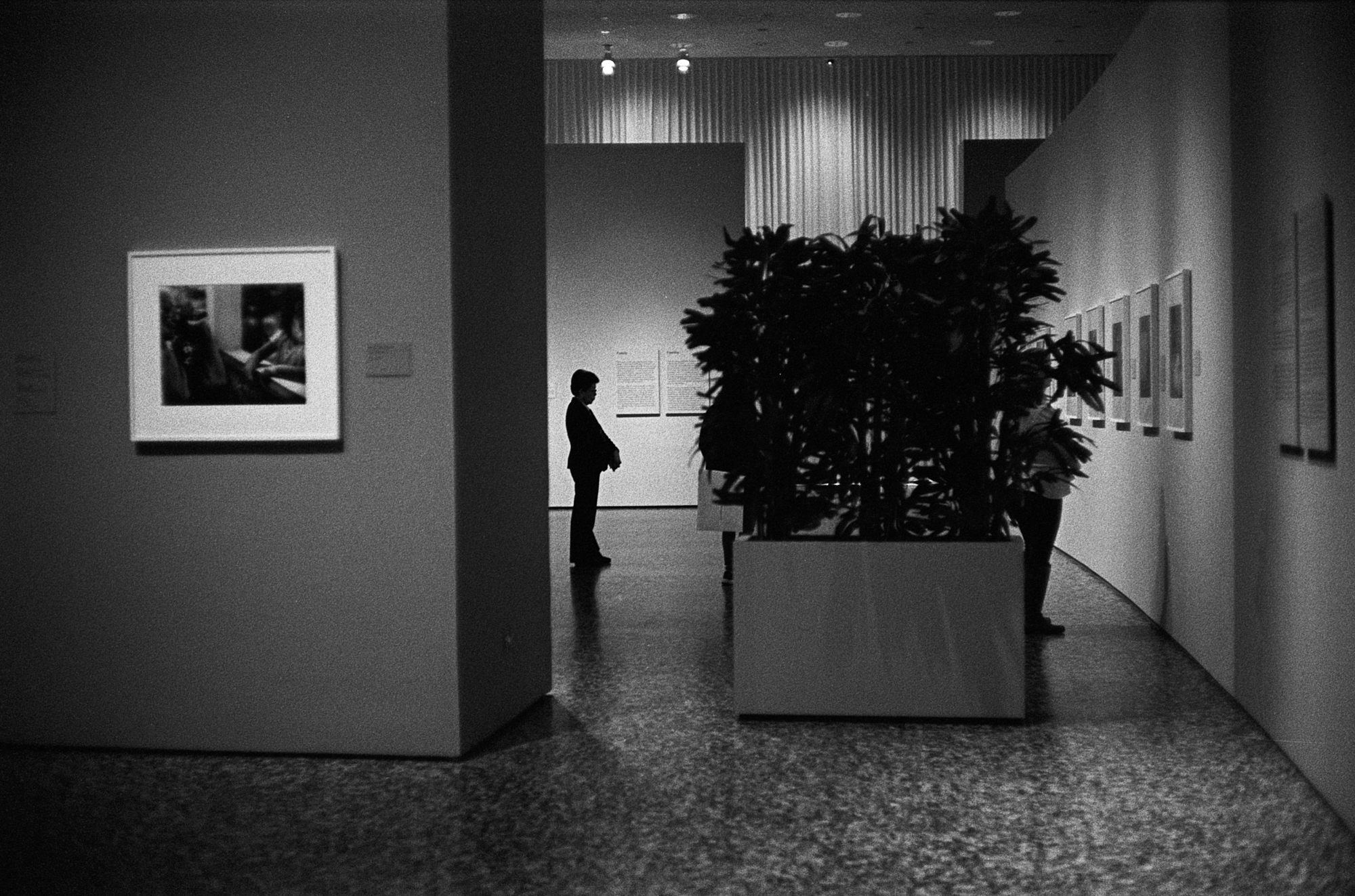 Houston MFAH (6 of 8).jpg