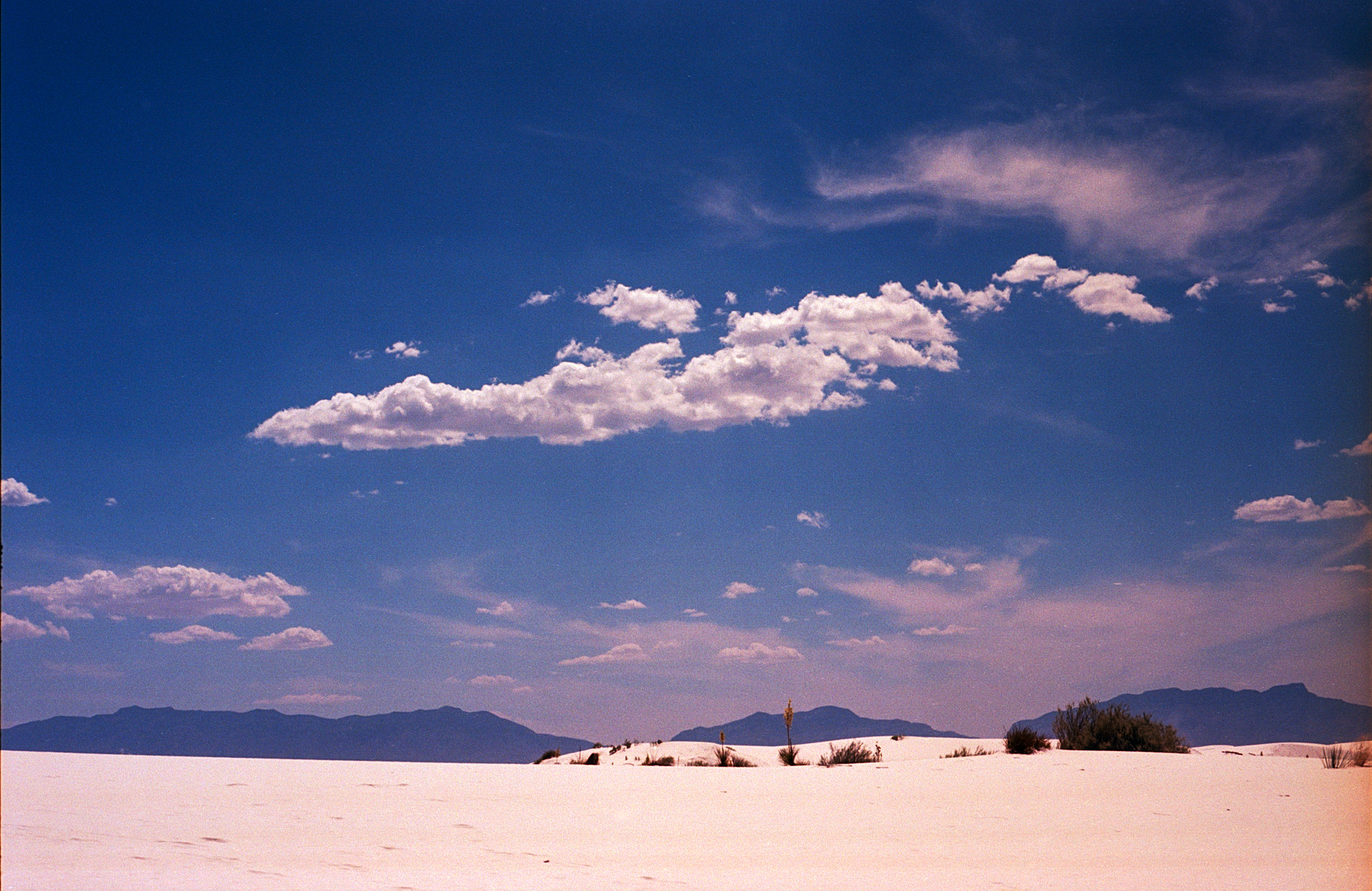 Into the West 2019 1 White Sands  (9 of 11).jpg