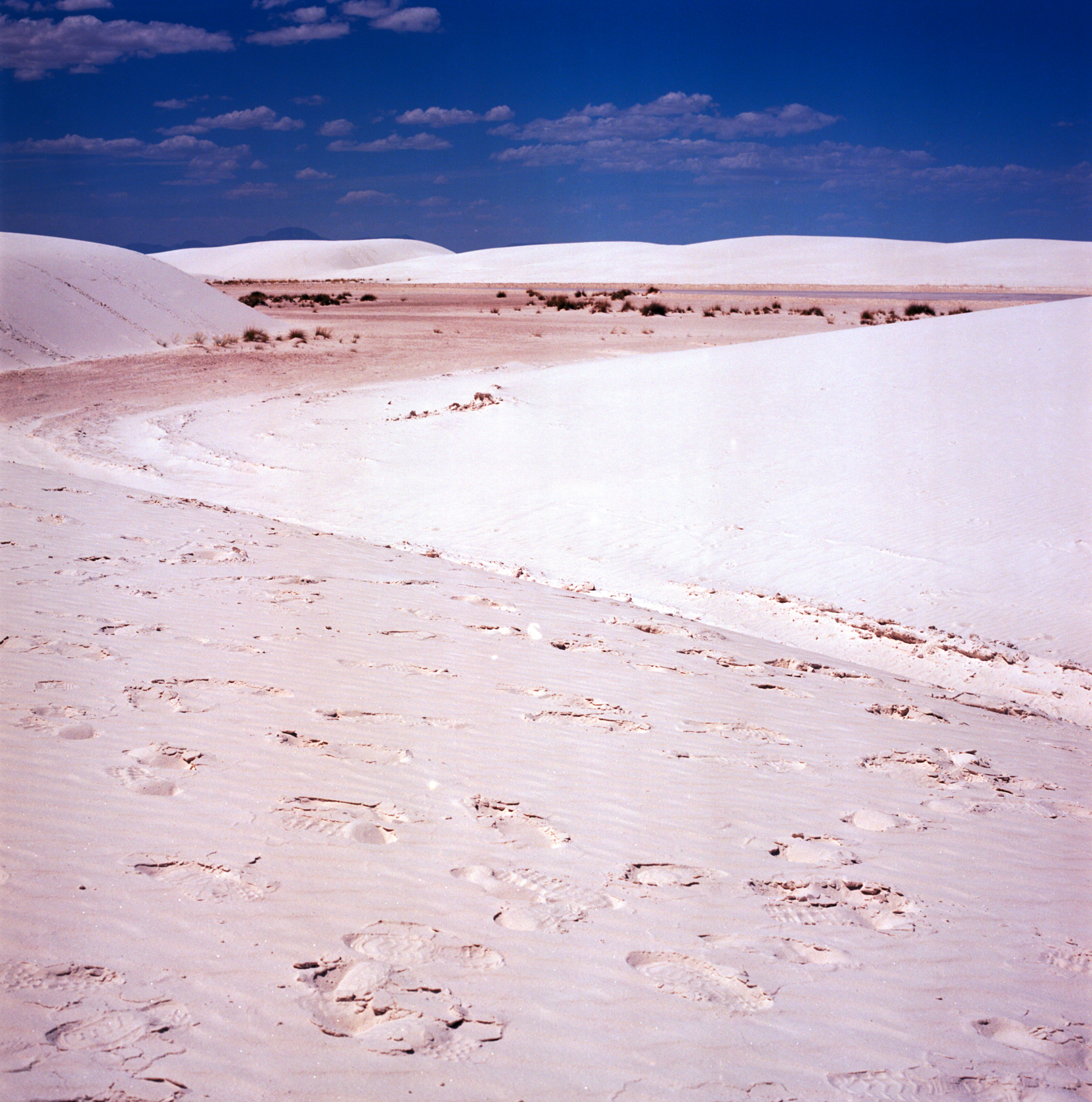 Into the West 2019 1 White Sands  (3 of 8).jpg