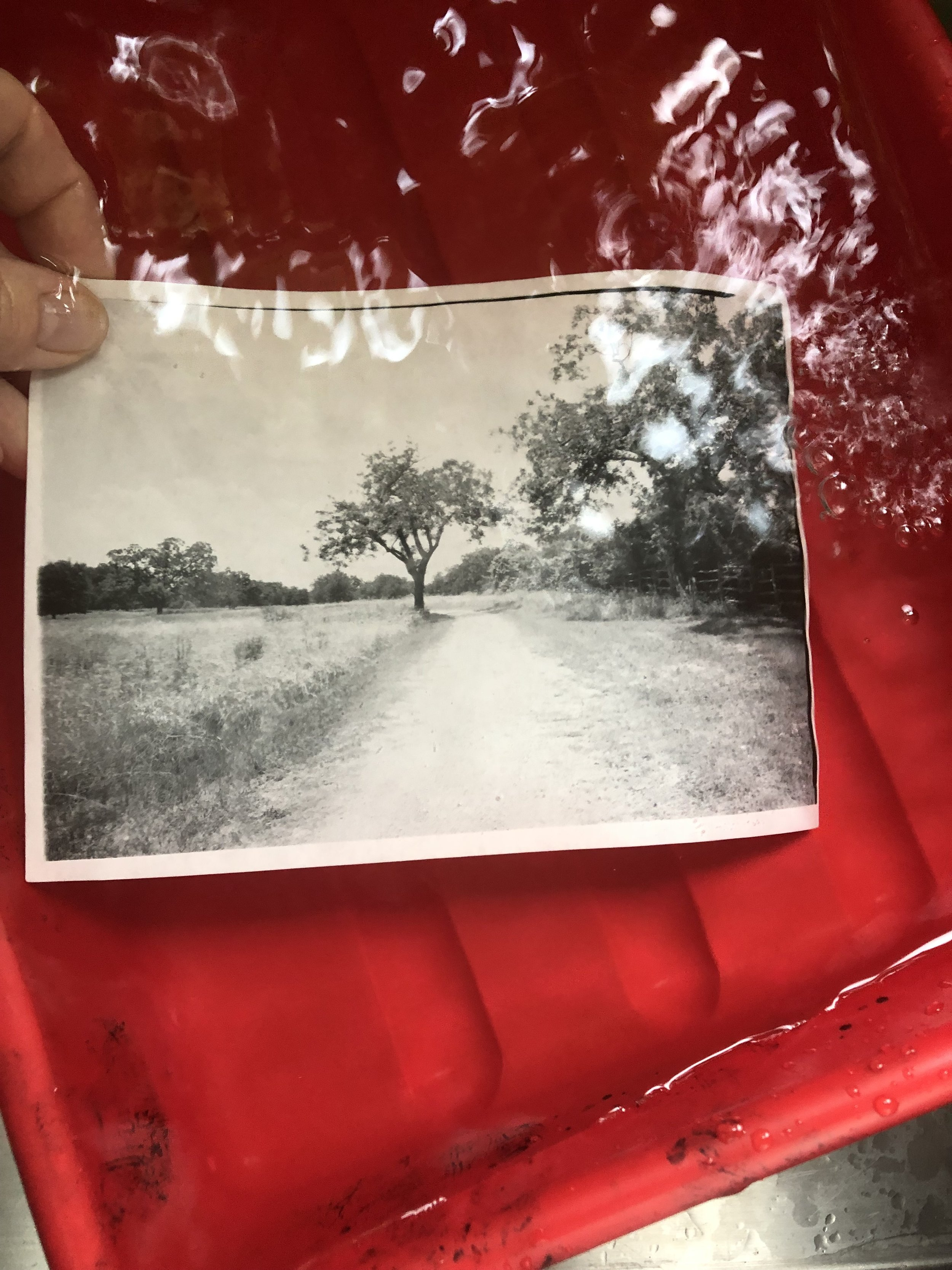 Azo paper test print in the wash