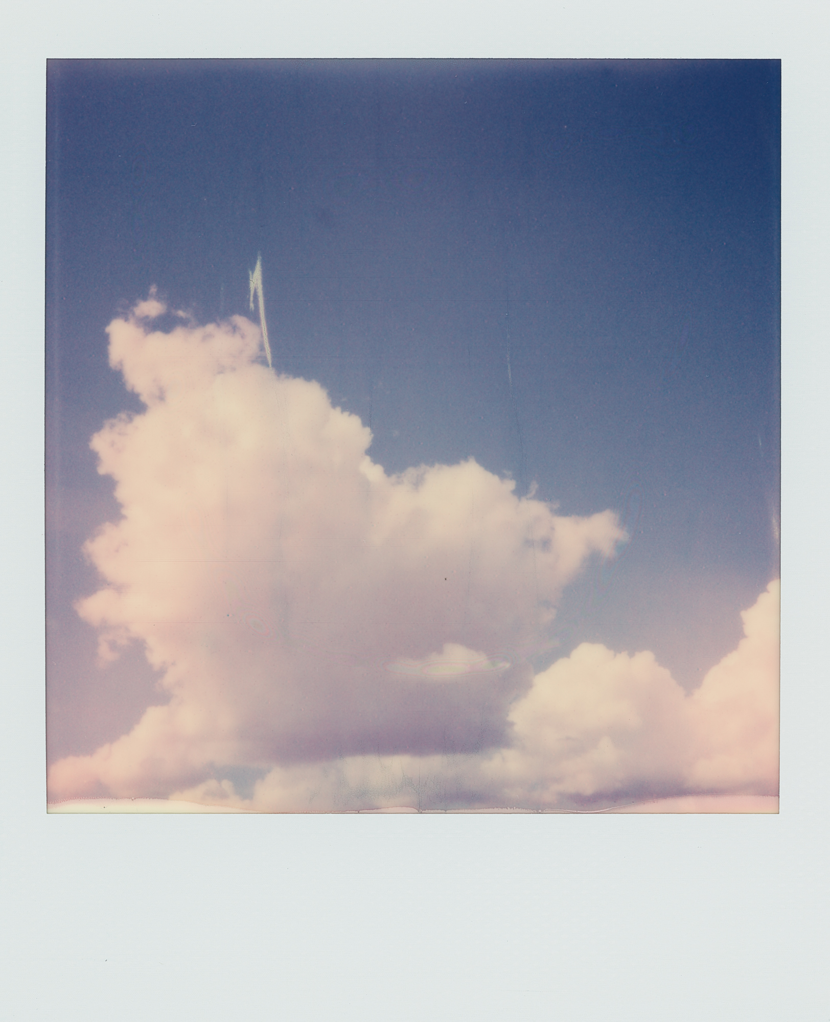 into the west Santa Rosa 2019 Polaroid color (1 of 1).jpg