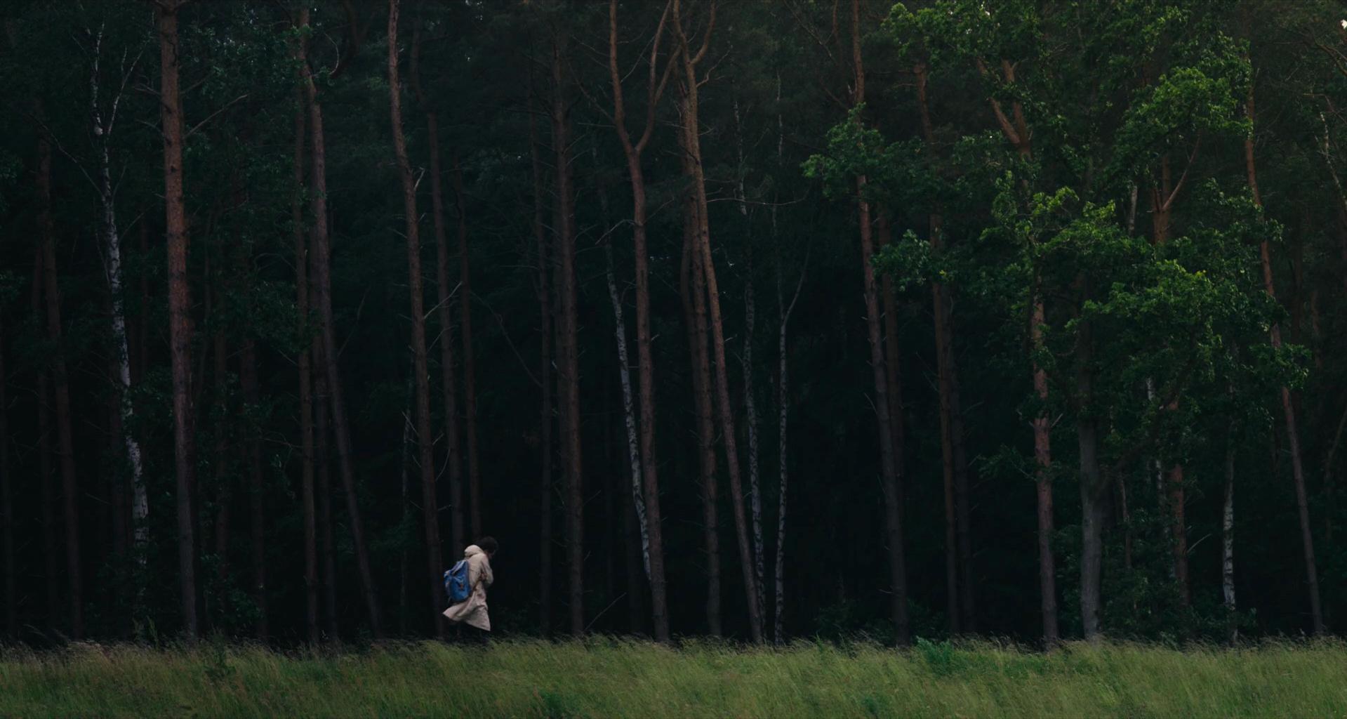 Still_Wanderer_01©wirFILM:Campean.jpg