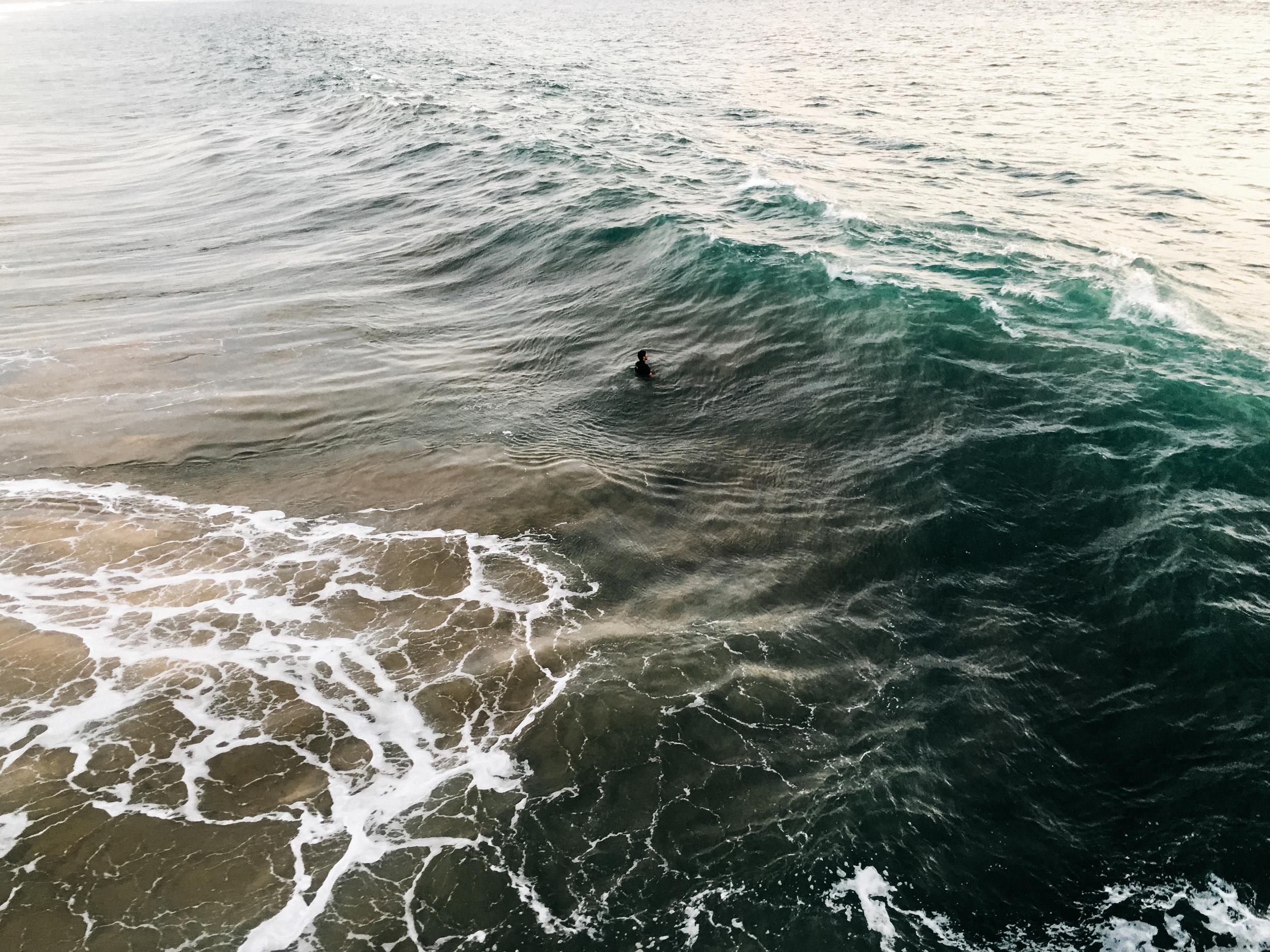 Vencie Beach_from Camera (9 of 34).jpg
