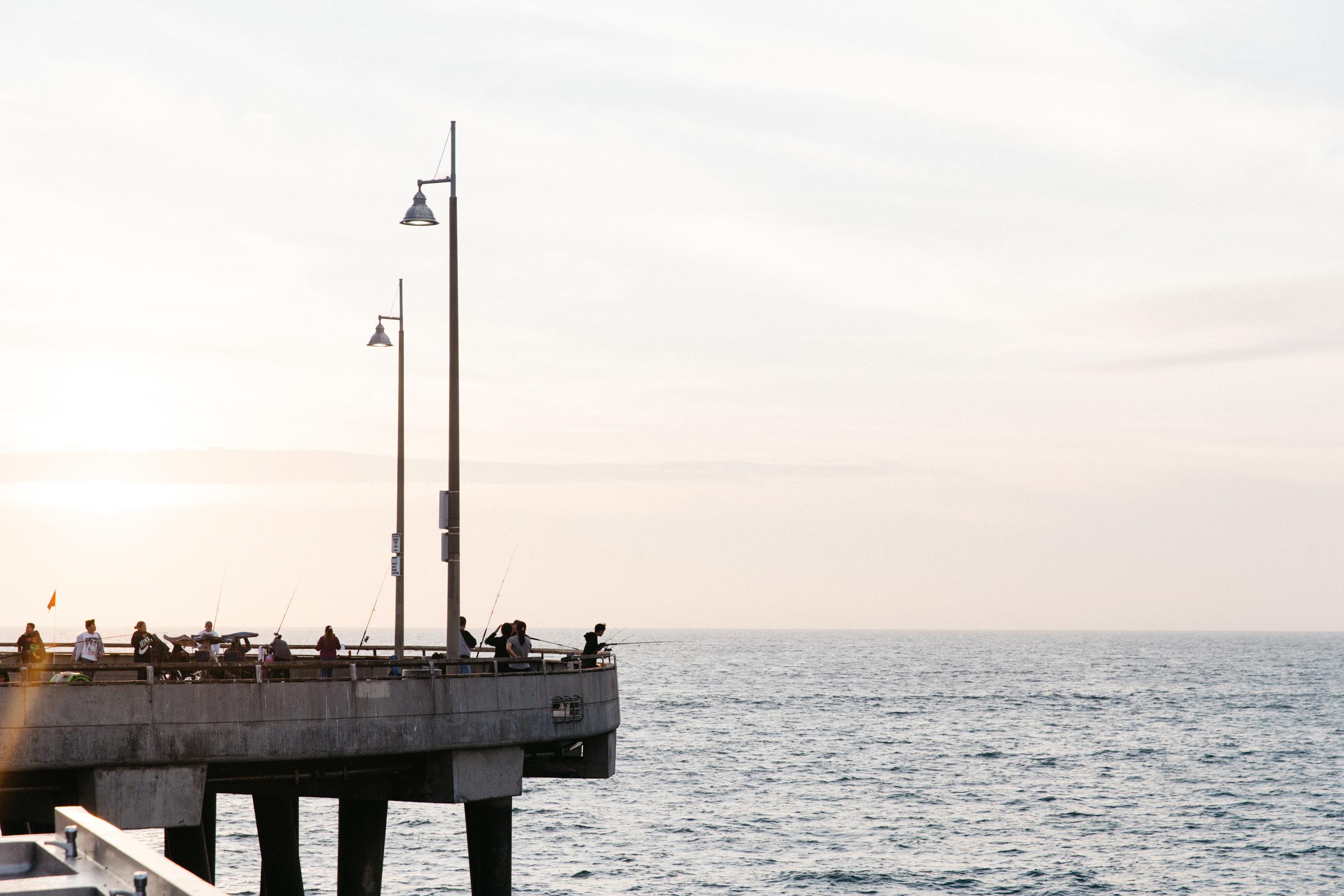 Vencie Beach_from Camera (27 of 34).jpg