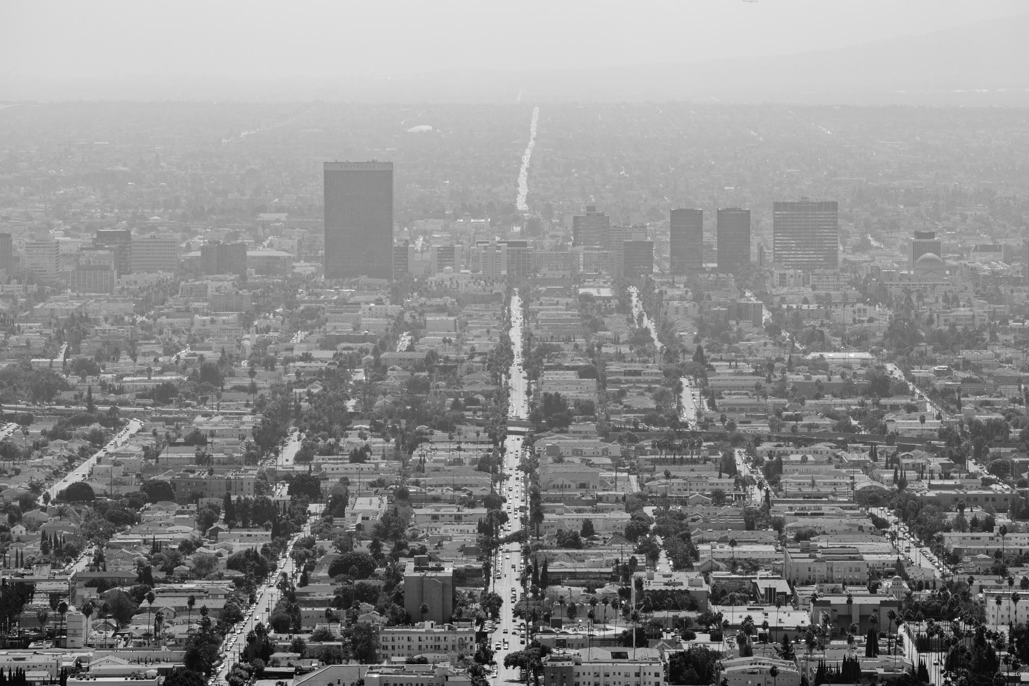LA - Copyright Toby Mitchell (4 of 6).jpg
