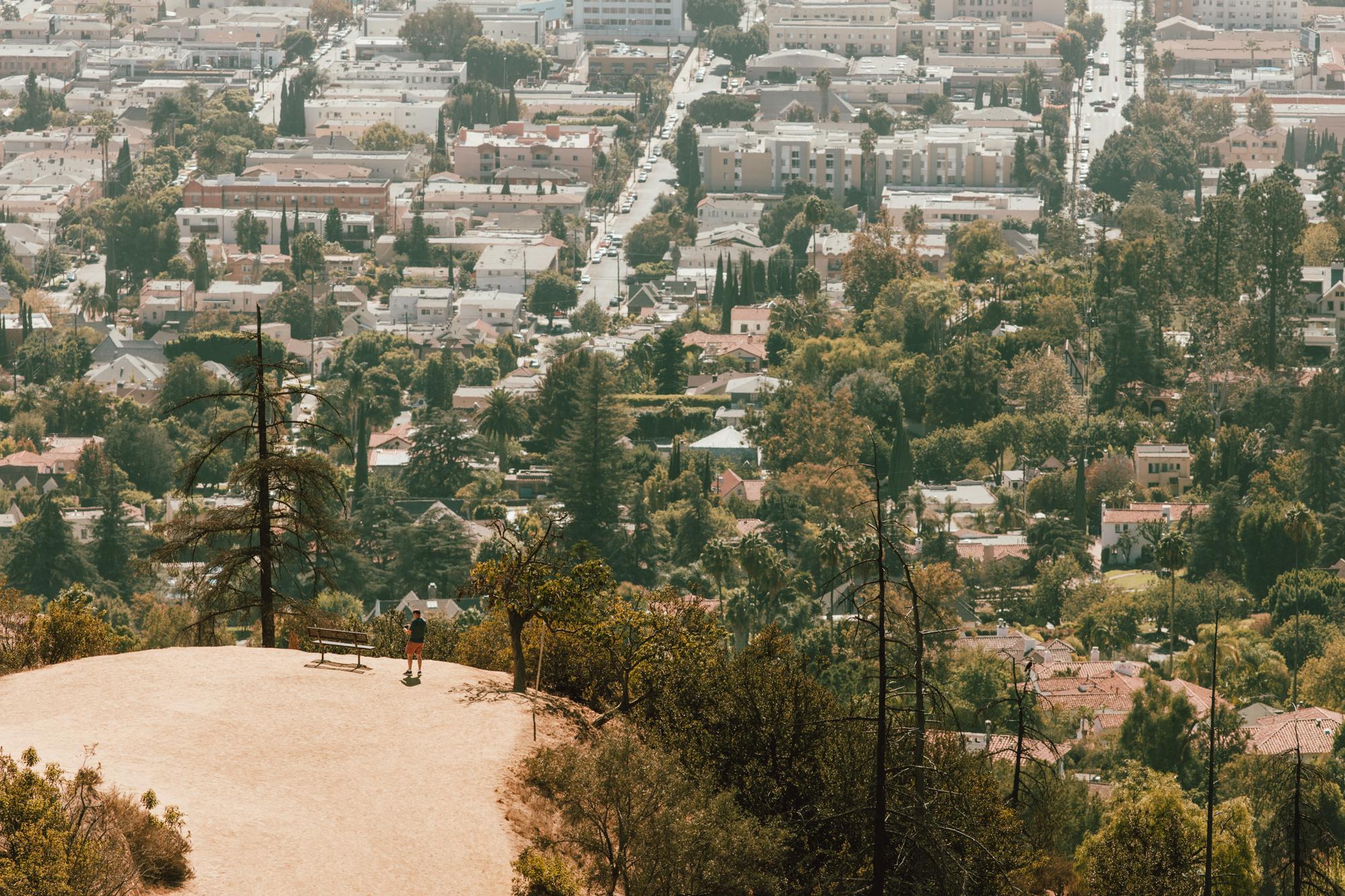 LA - Copyright Toby Mitchell (3 of 6).jpg