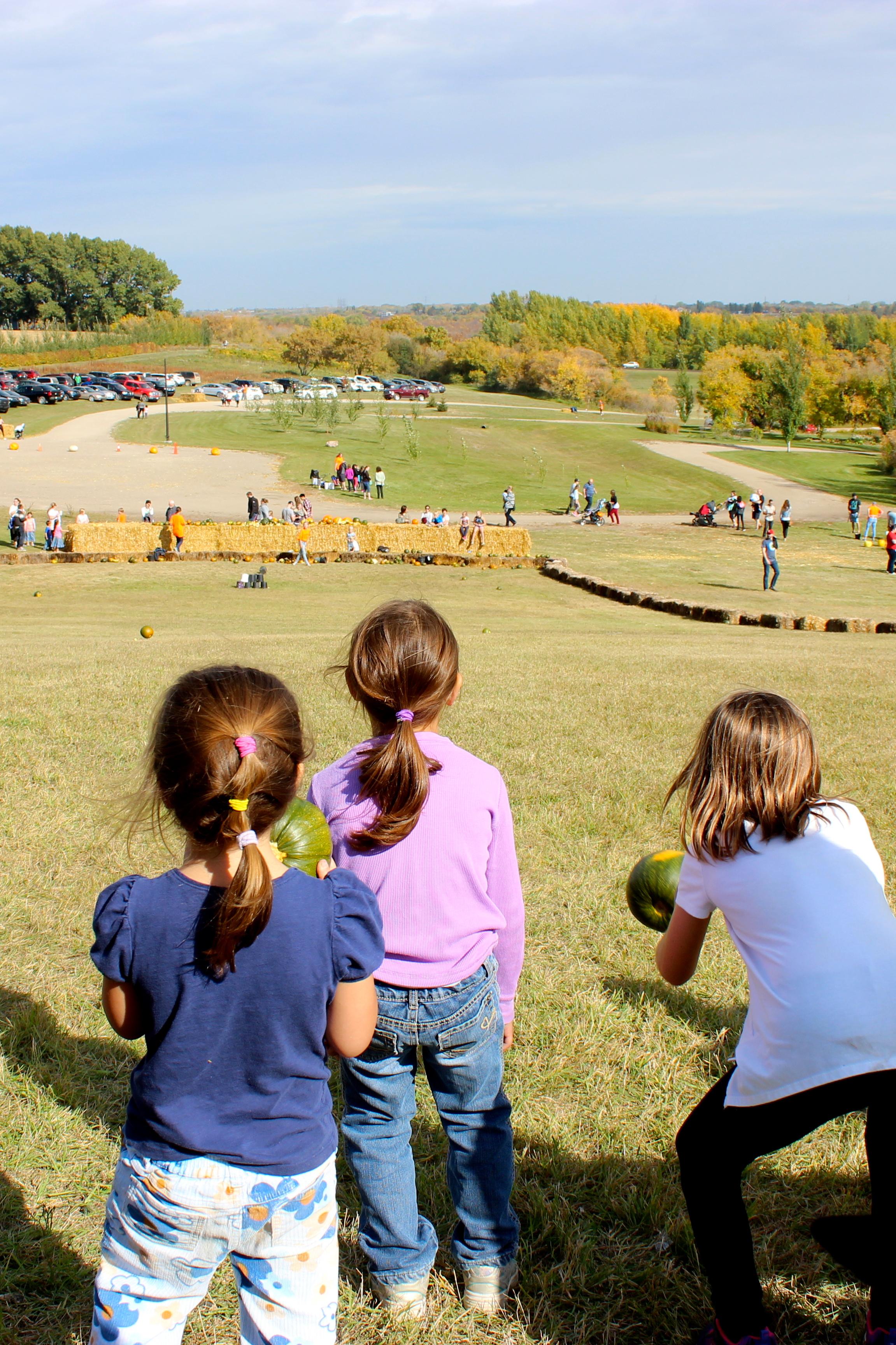 Kids Pumpkin Fest.jpg