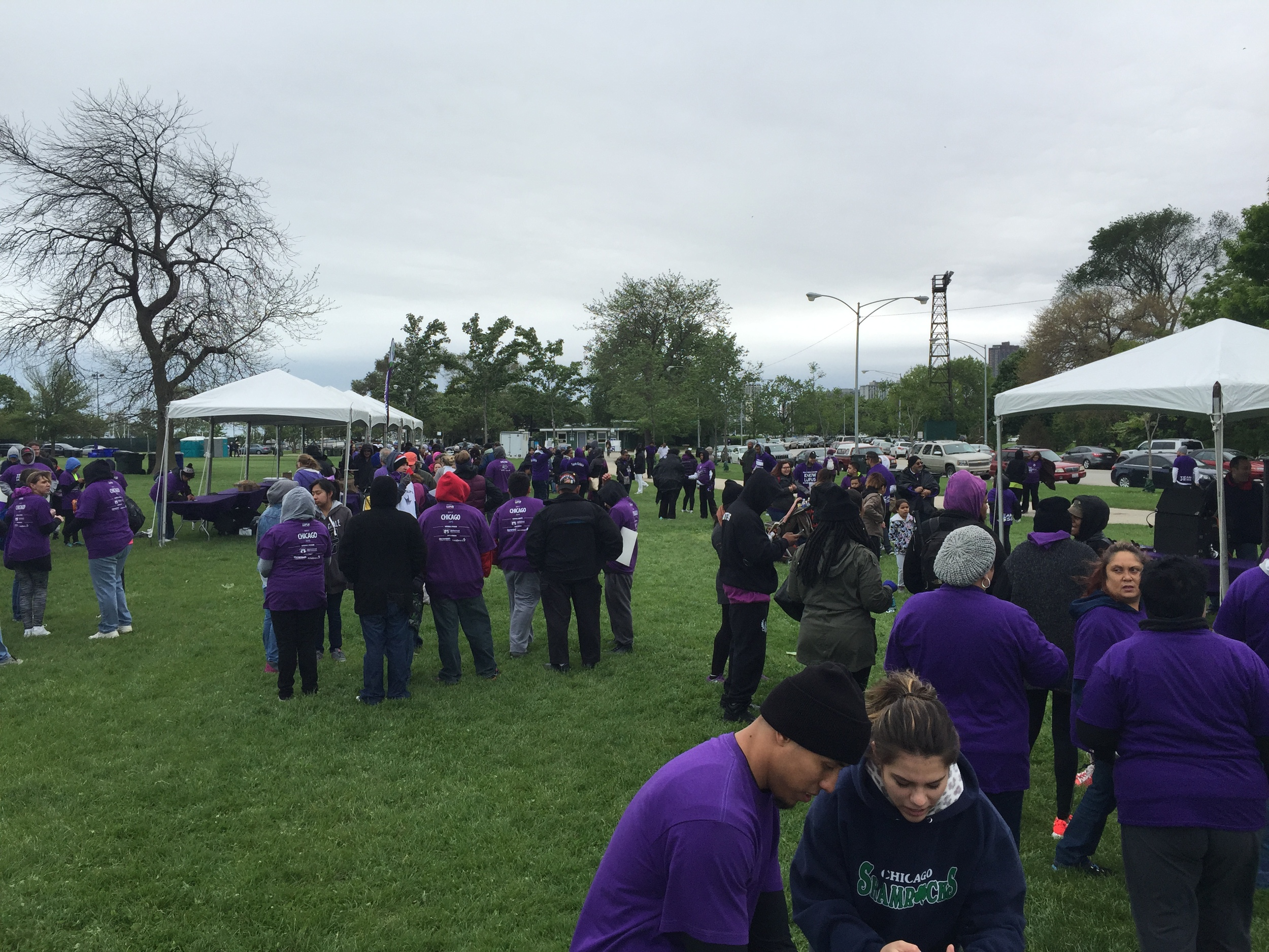 A sea of purple.