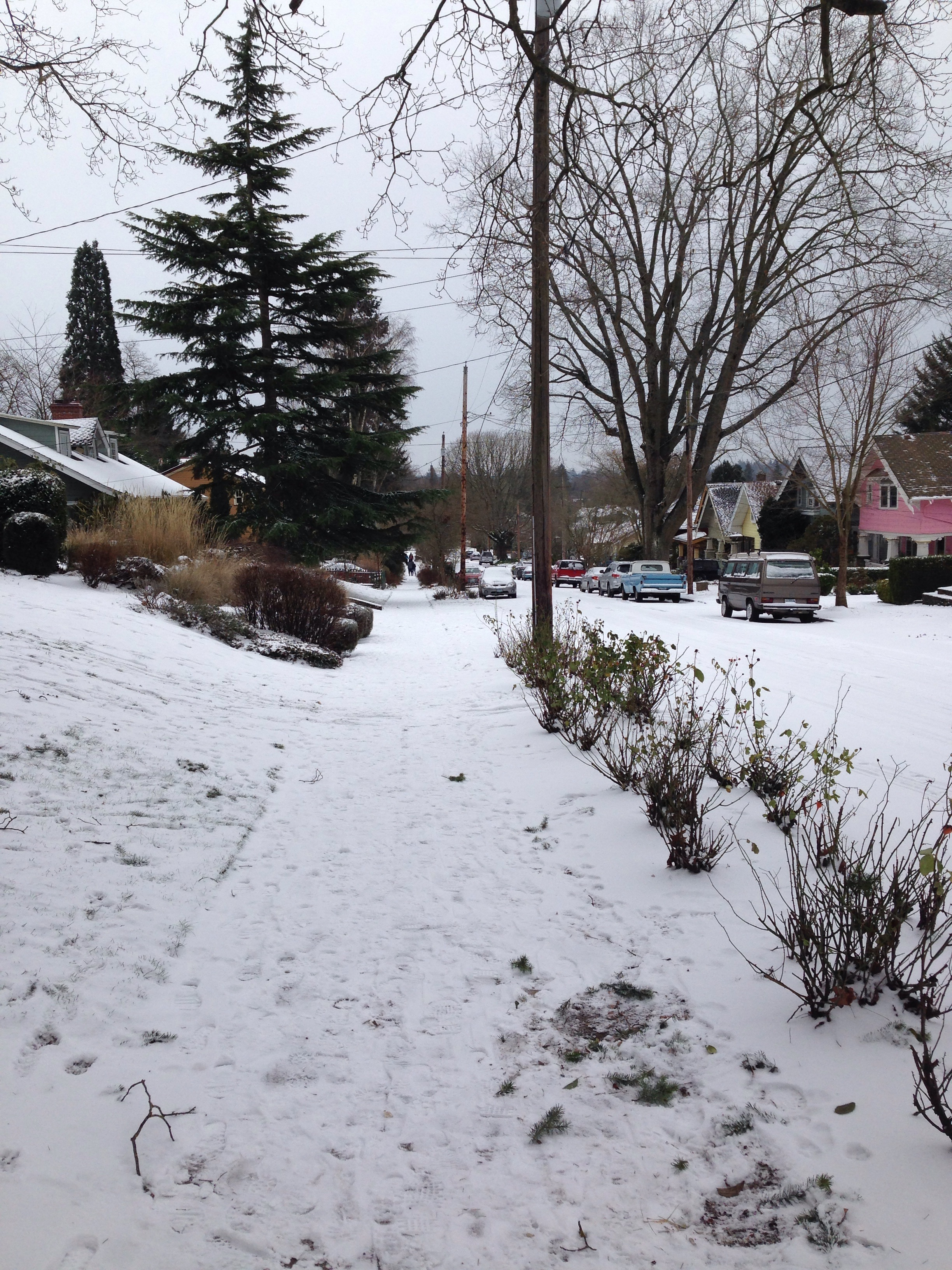 The streets of our home office in Portland, Oregon January 4th, 2016