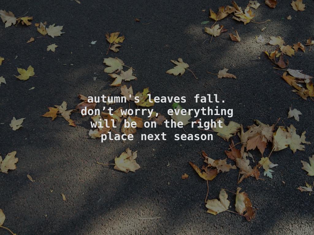 leaves.001.jpeg