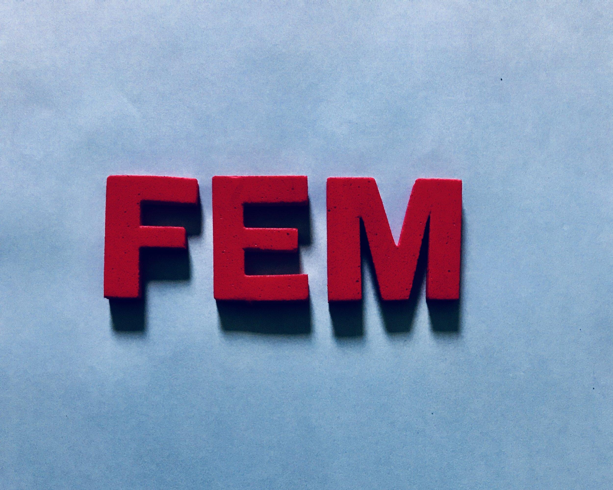 FEM_thumb.jpg