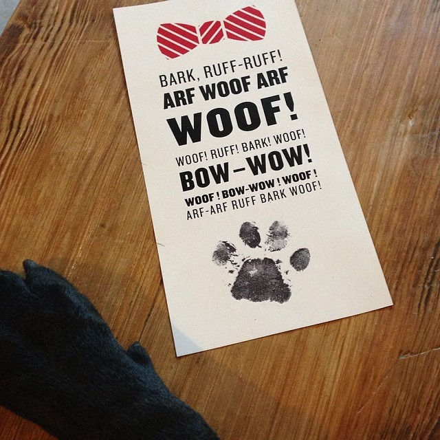 Getting ready for Fur Ball 2014, as @cutelittetucker signs notes to his canine guests.