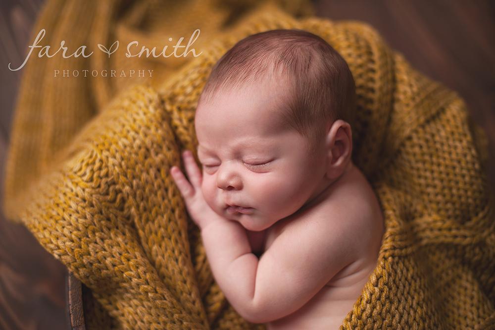 newborn portratis